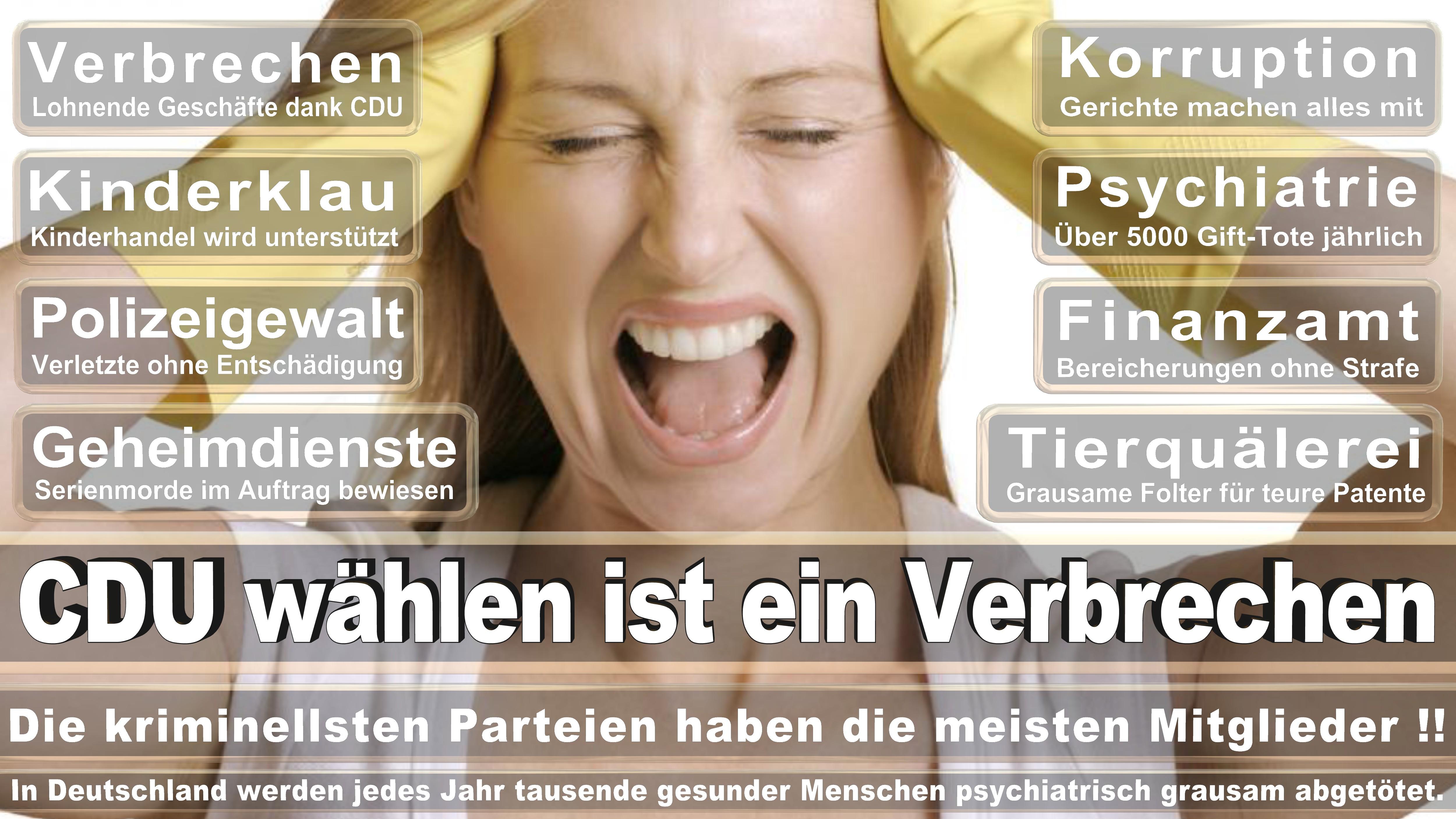 Bundestagswahl-2017-CDU-SPD-FDP (1)