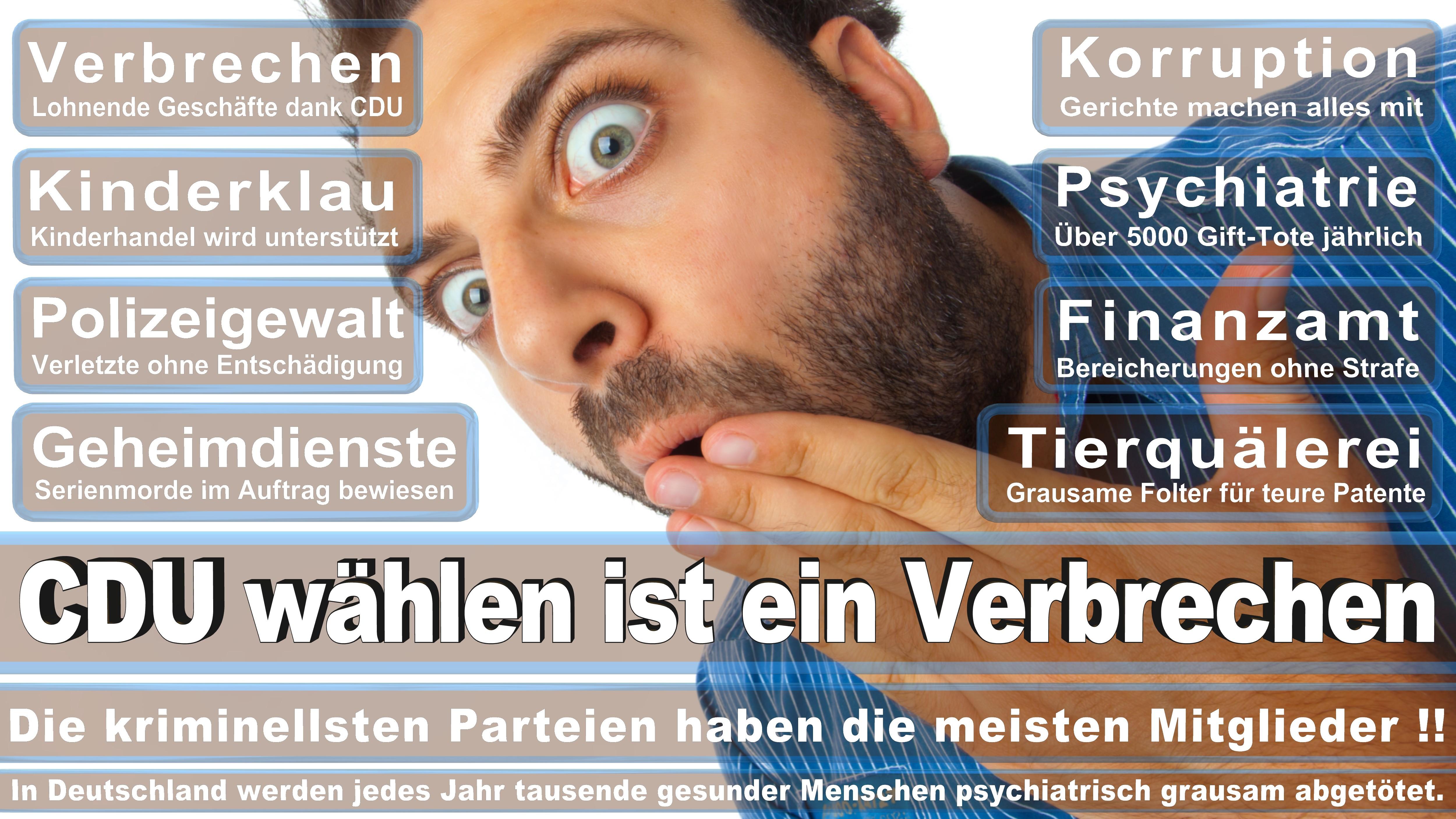Bundestagswahl-2017-CDU-SPD-FDP (102)