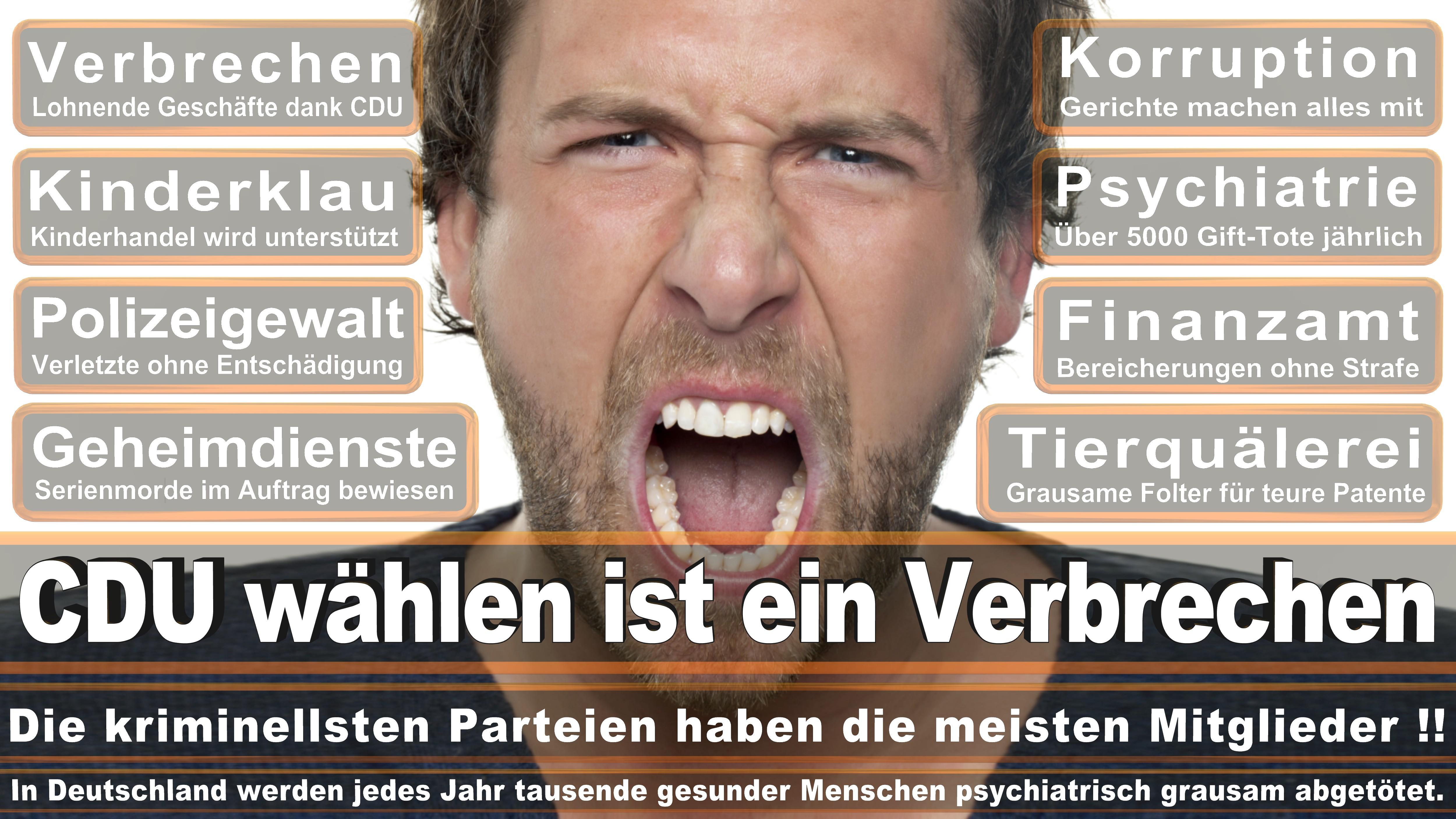 Bundestagswahl-2017-CDU-SPD-FDP (105)