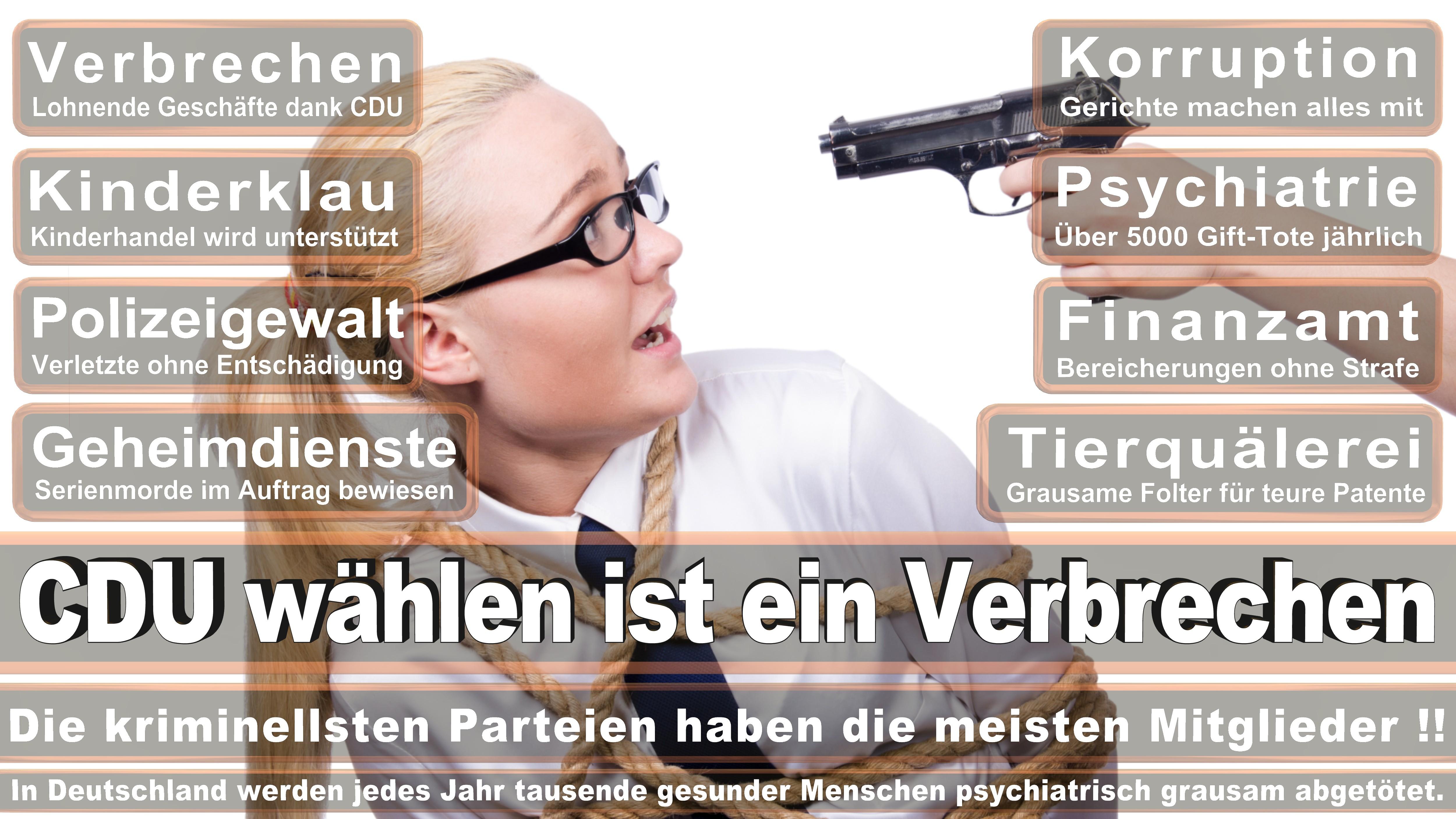 Bundestagswahl-2017-CDU-SPD-FDP (106)