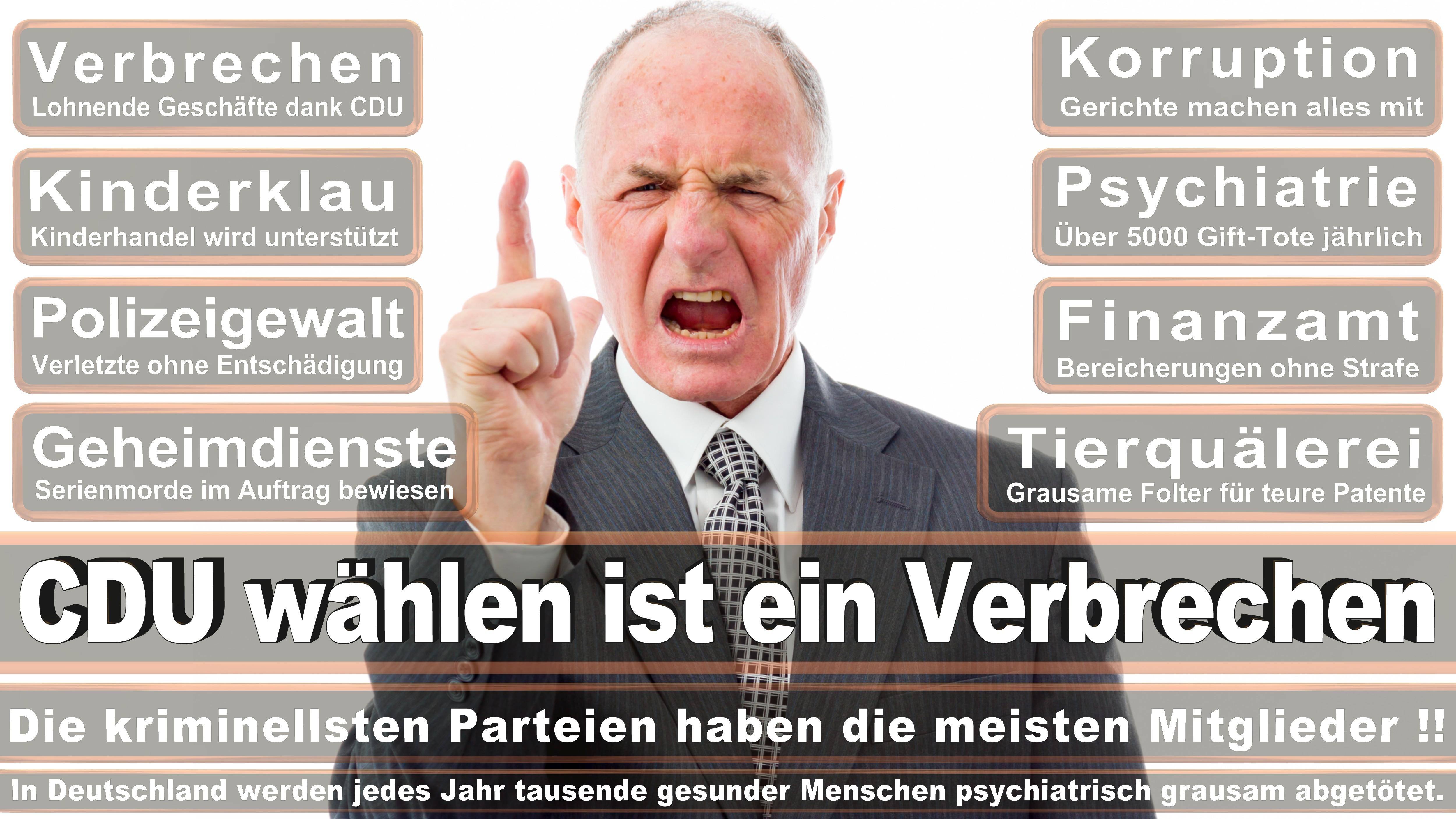 Bundestagswahl-2017-CDU-SPD-FDP (108)