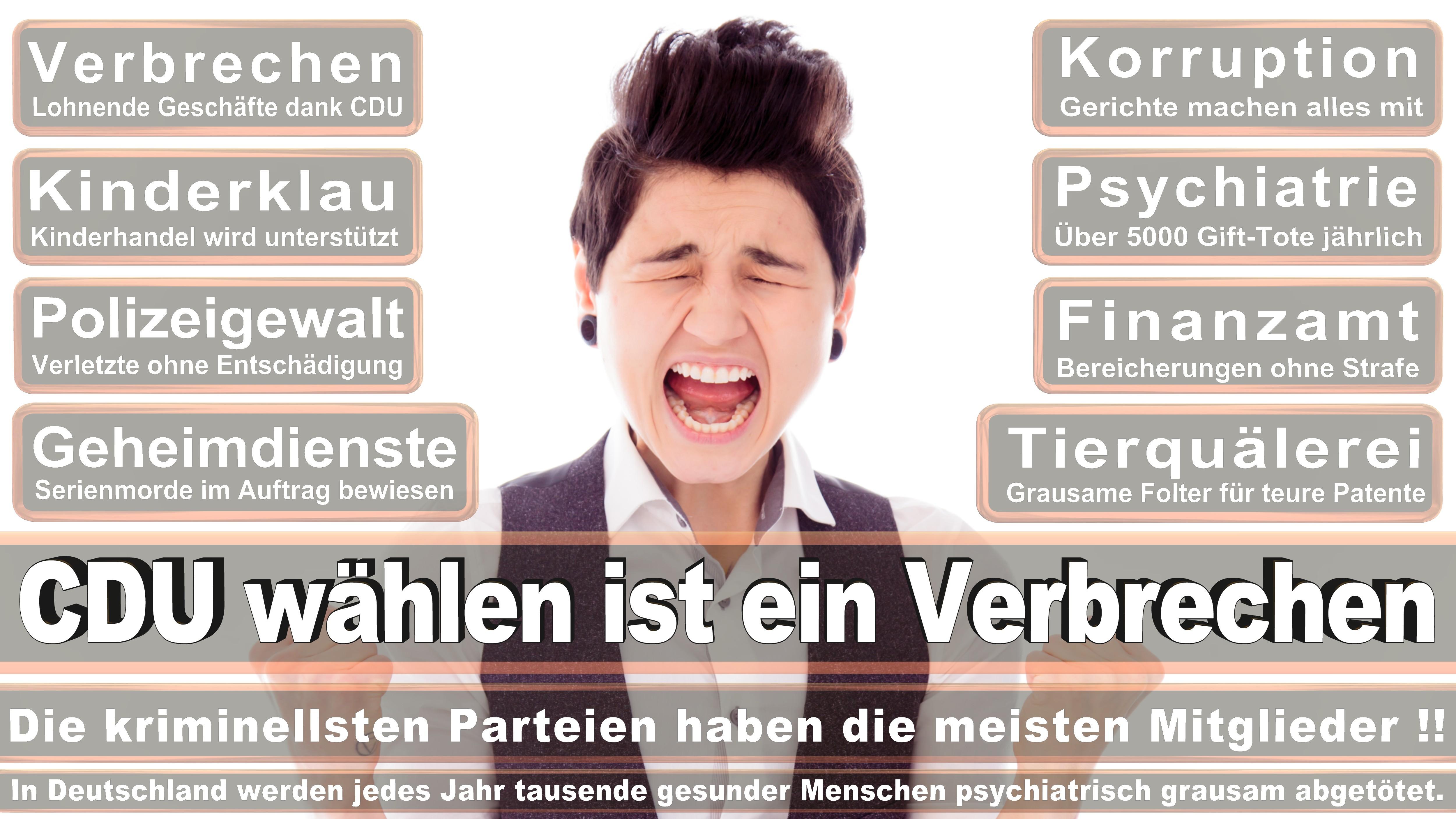 Bundestagswahl-2017-CDU-SPD-FDP (113)