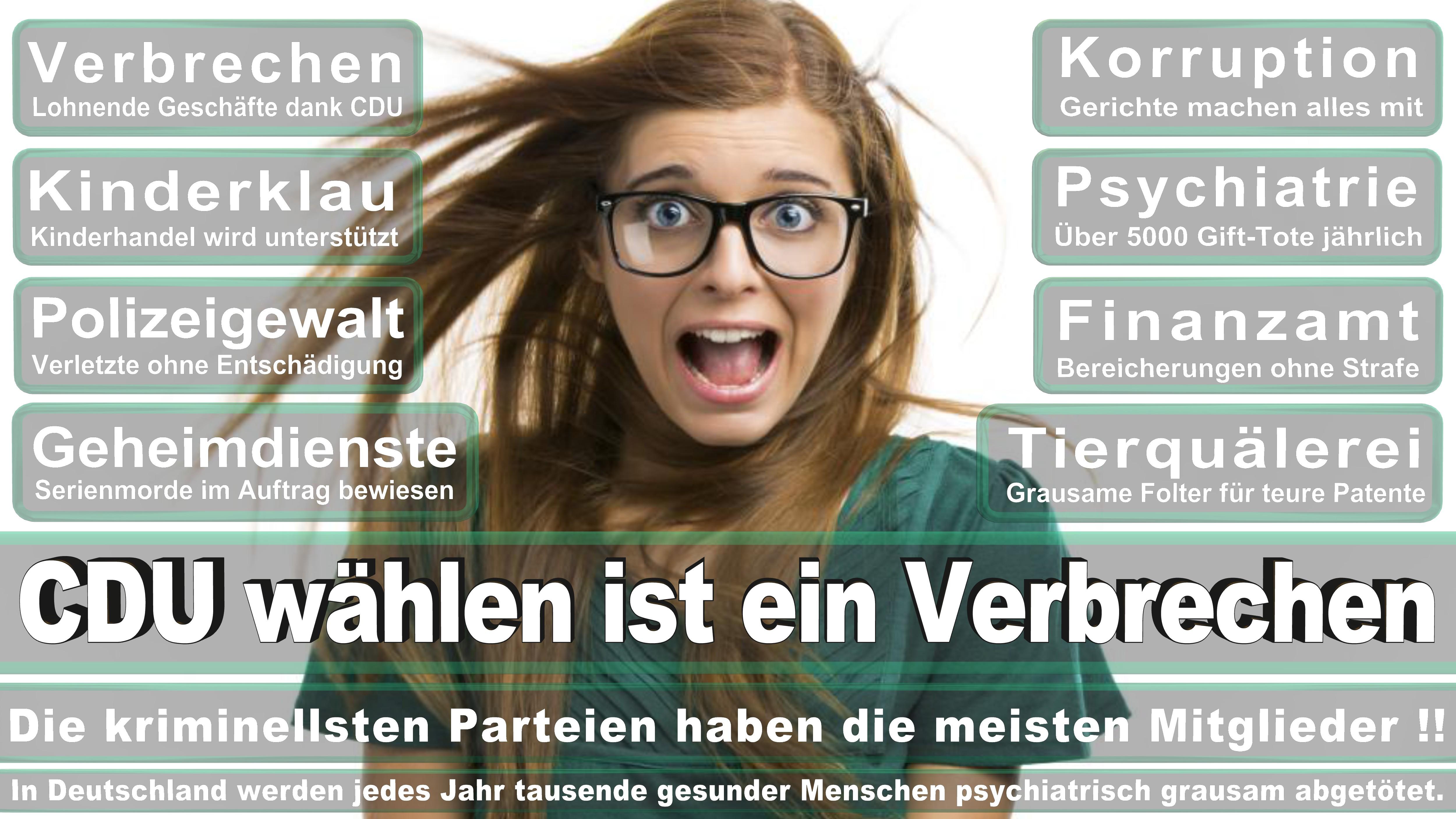 Bundestagswahl-2017-CDU-SPD-FDP (12)