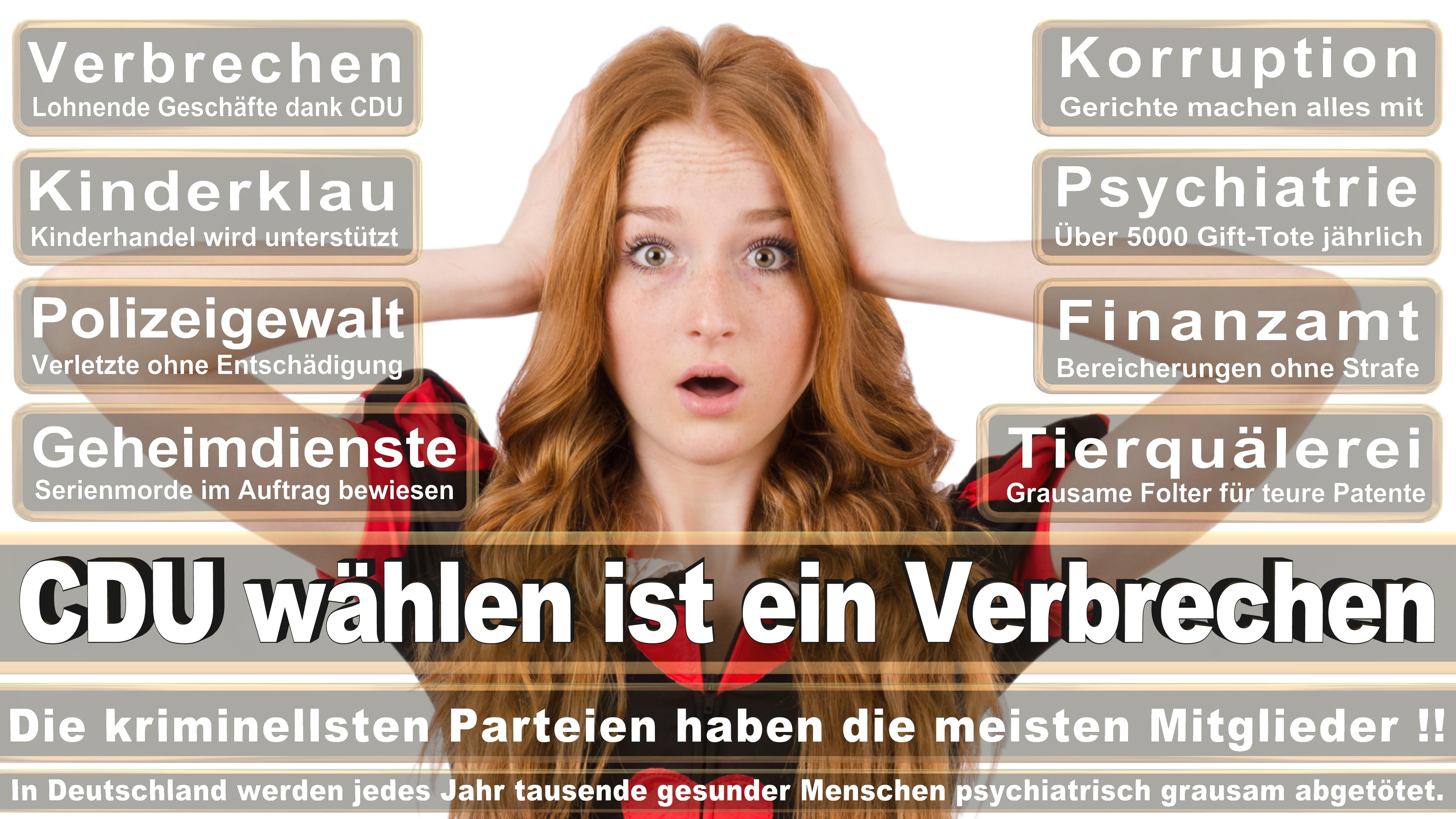Bundestagswahl-2017-CDU-SPD-FDP (127)