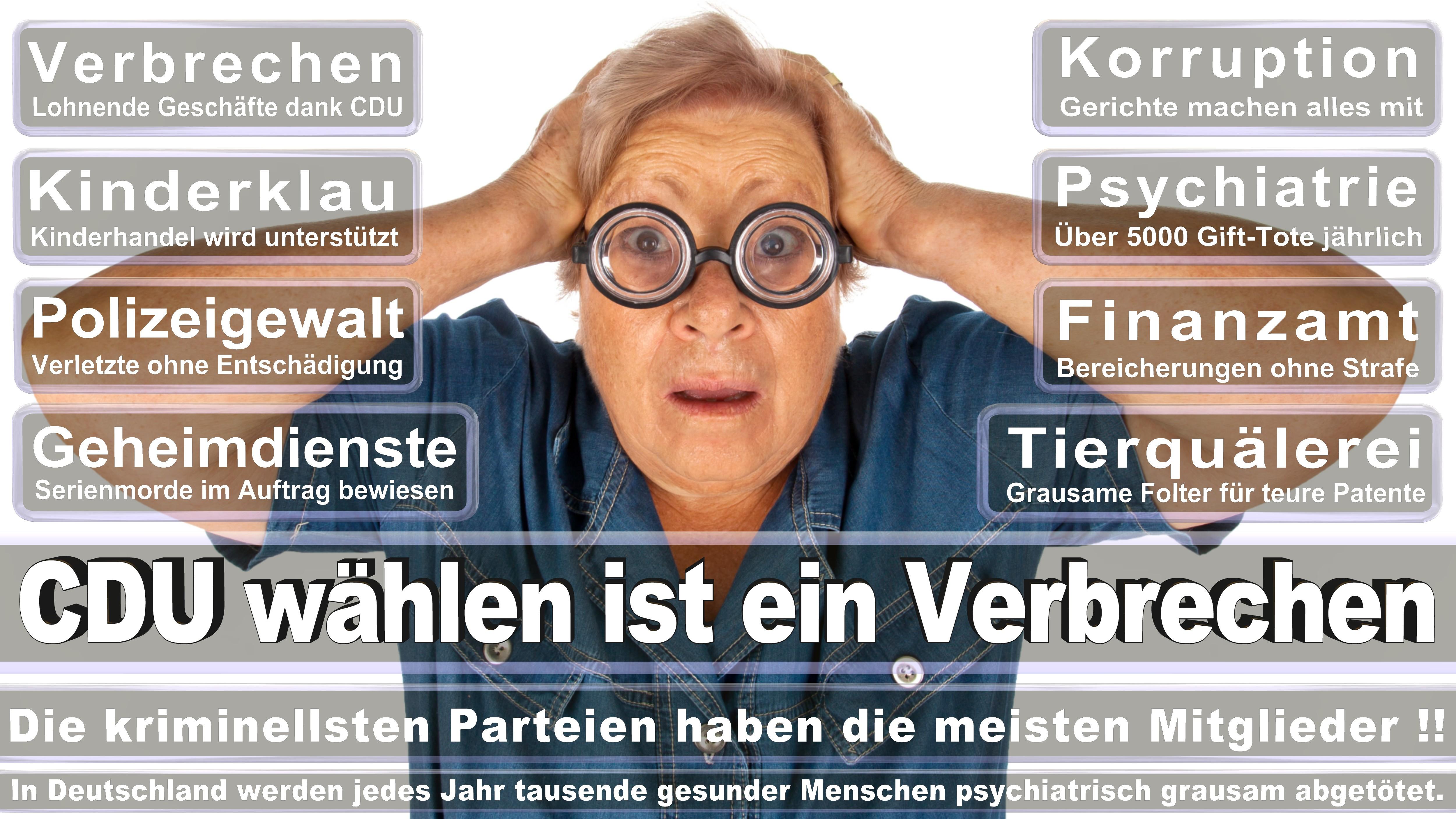 Bundestagswahl-2017-CDU-SPD-FDP (128)