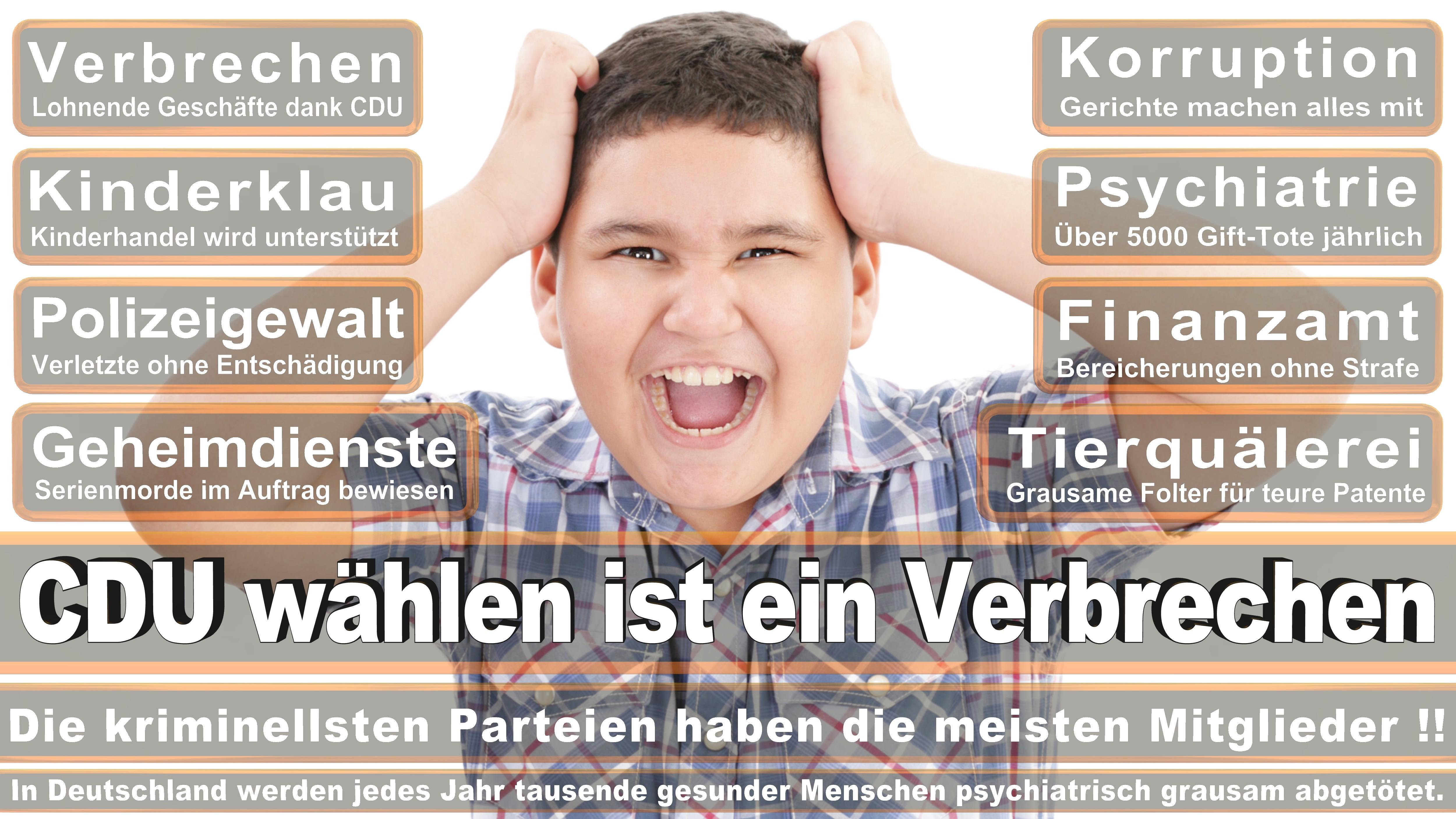 Bundestagswahl-2017-CDU-SPD-FDP (131)