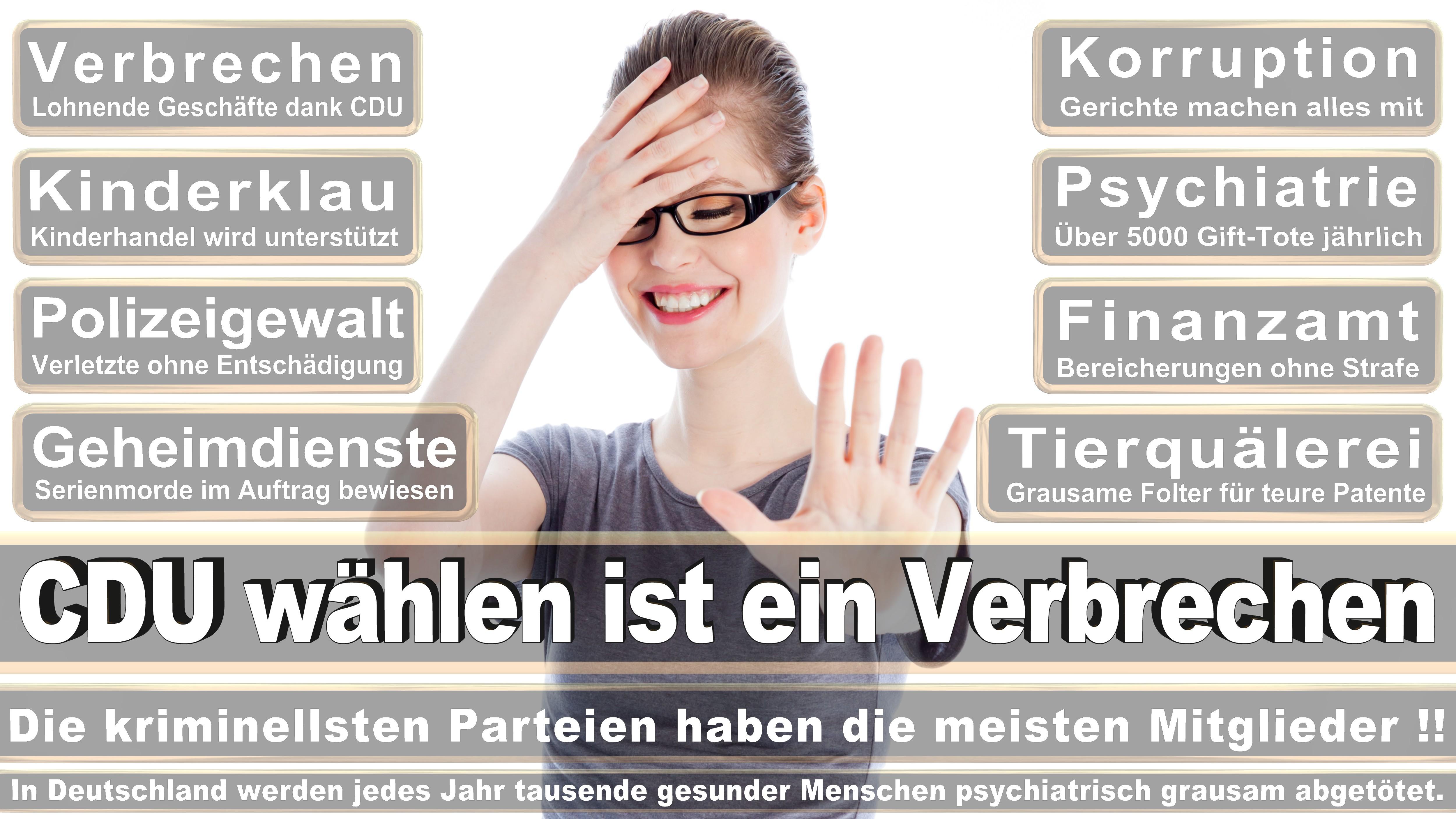 Bundestagswahl-2017-CDU-SPD-FDP (132)
