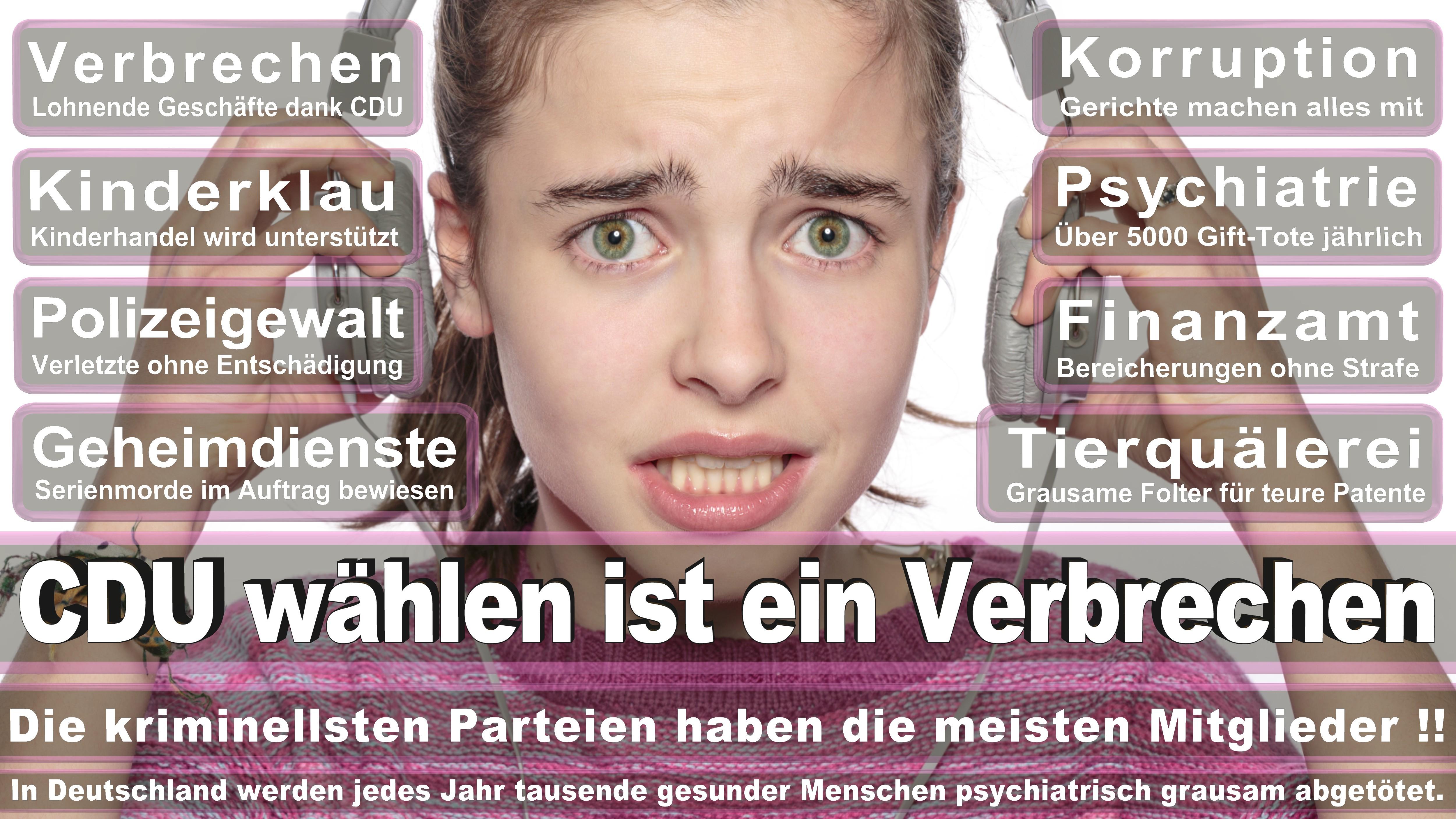 Bundestagswahl-2017-CDU-SPD-FDP (135)