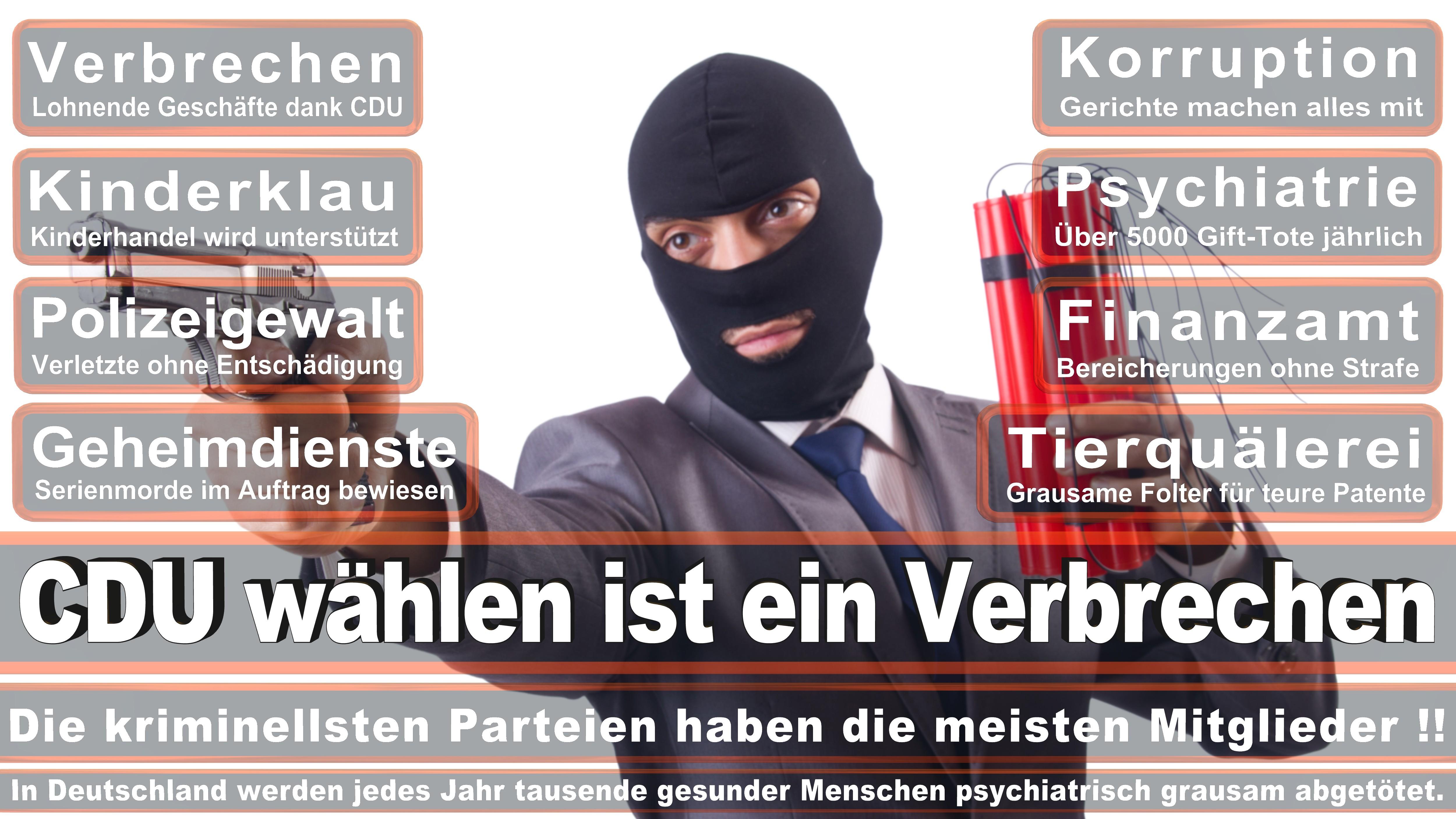 Bundestagswahl-2017-CDU-SPD-FDP (152)