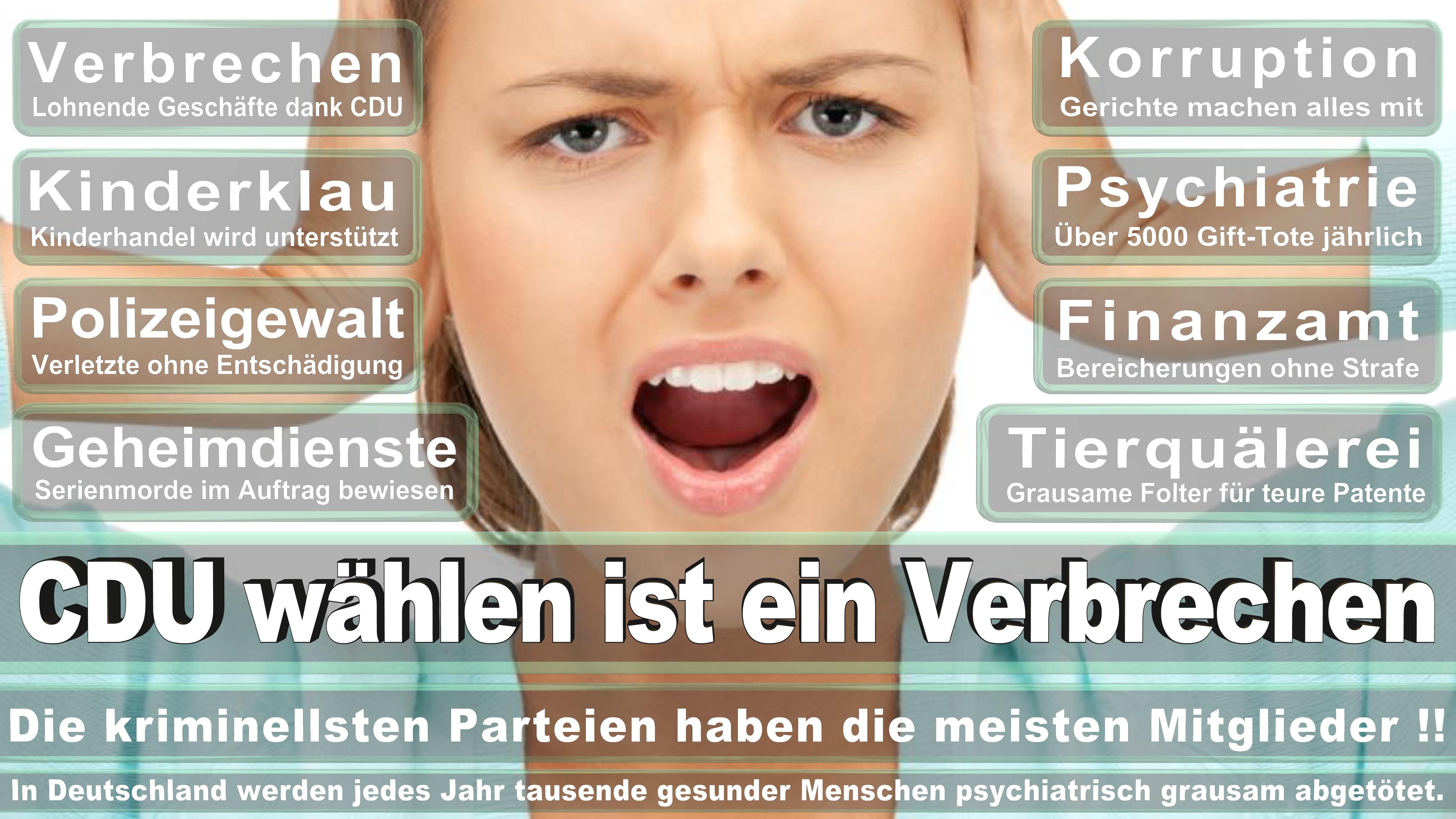Bundestagswahl-2017-CDU-SPD-FDP (16)