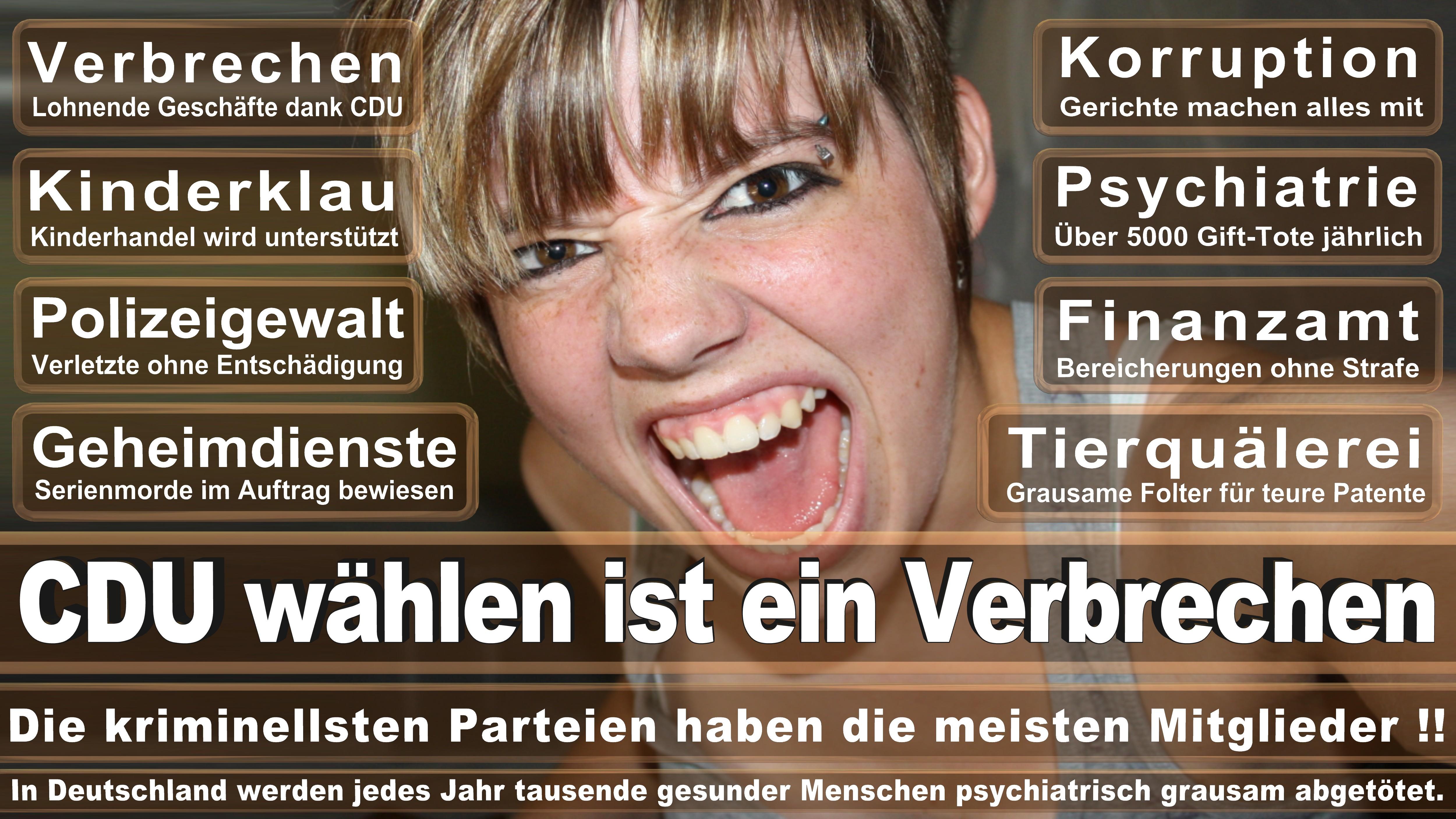 Bundestagswahl-2017-CDU-SPD-FDP (160)