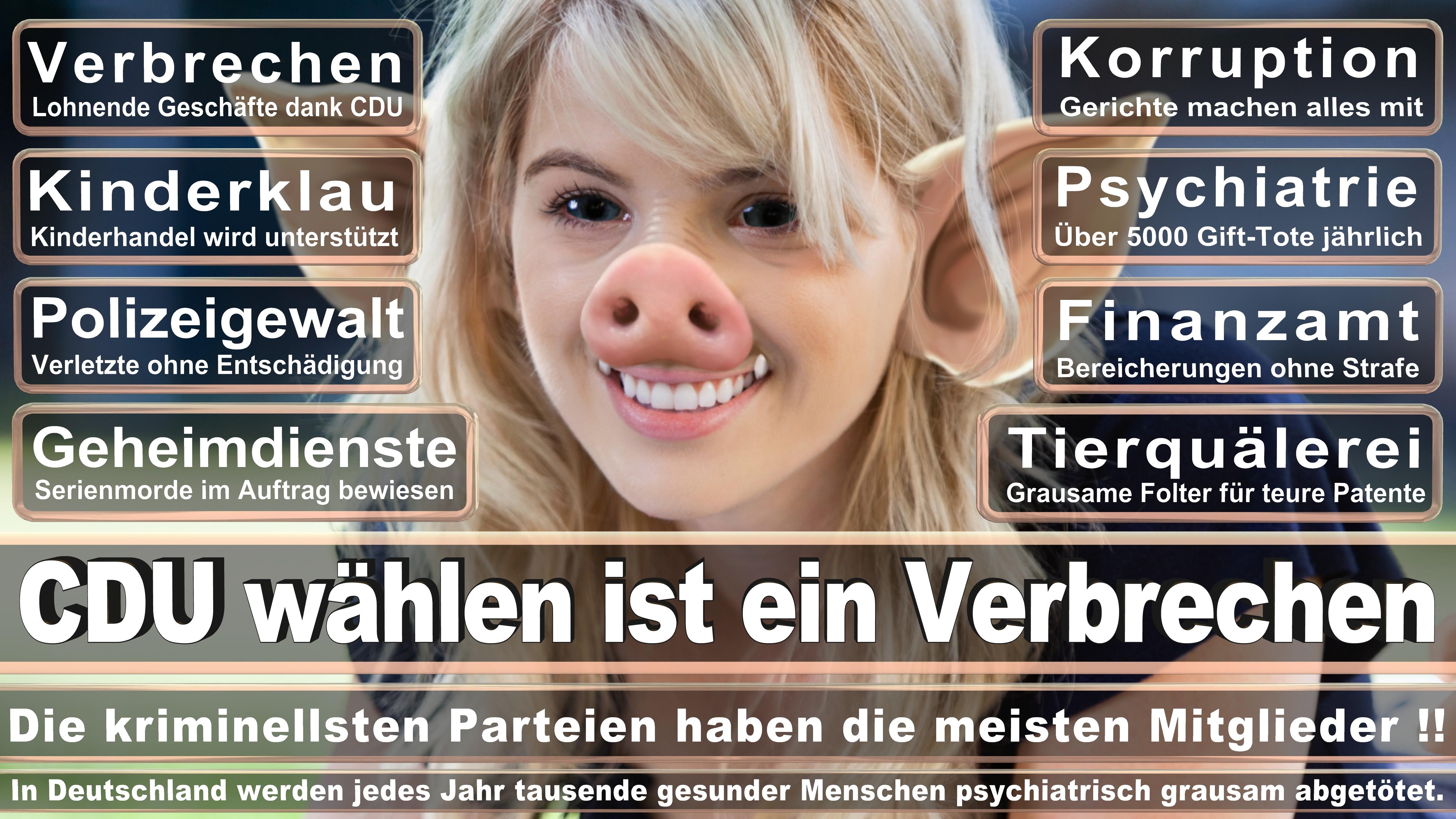 Bundestagswahl-2017-CDU-SPD-FDP (168)