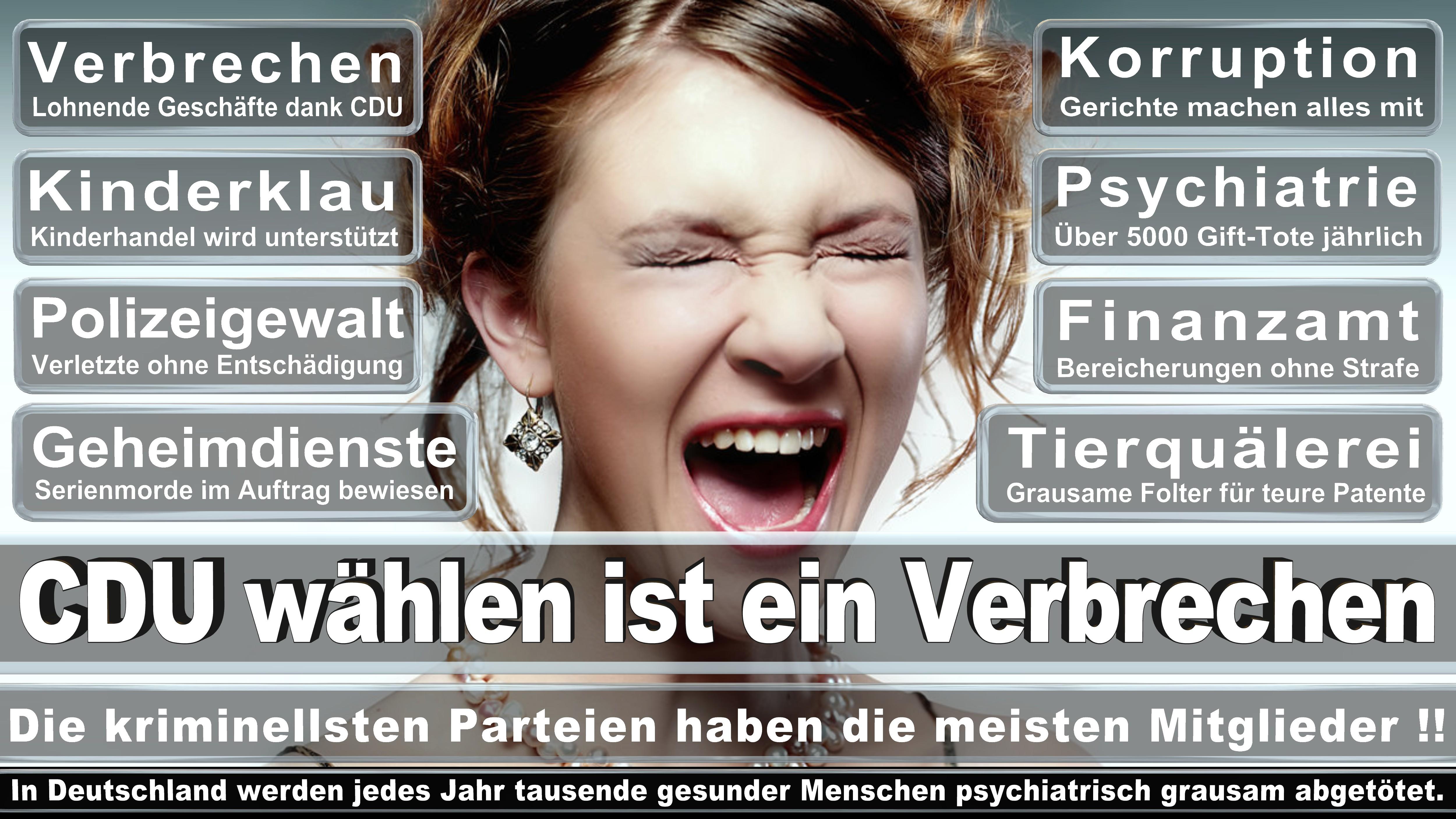 Bundestagswahl-2017-CDU-SPD-FDP (172)