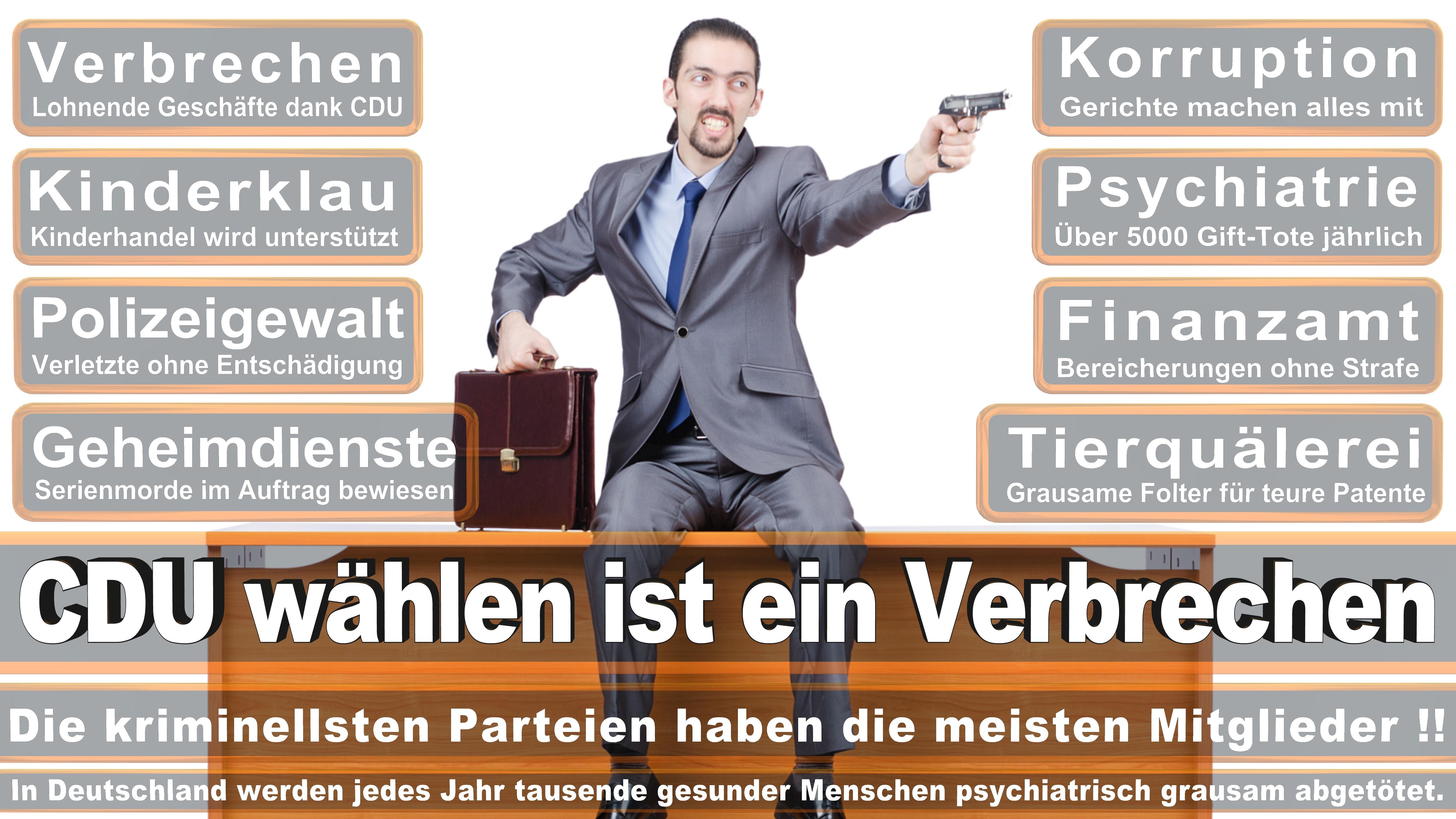 Bundestagswahl-2017-CDU-SPD-FDP (177)