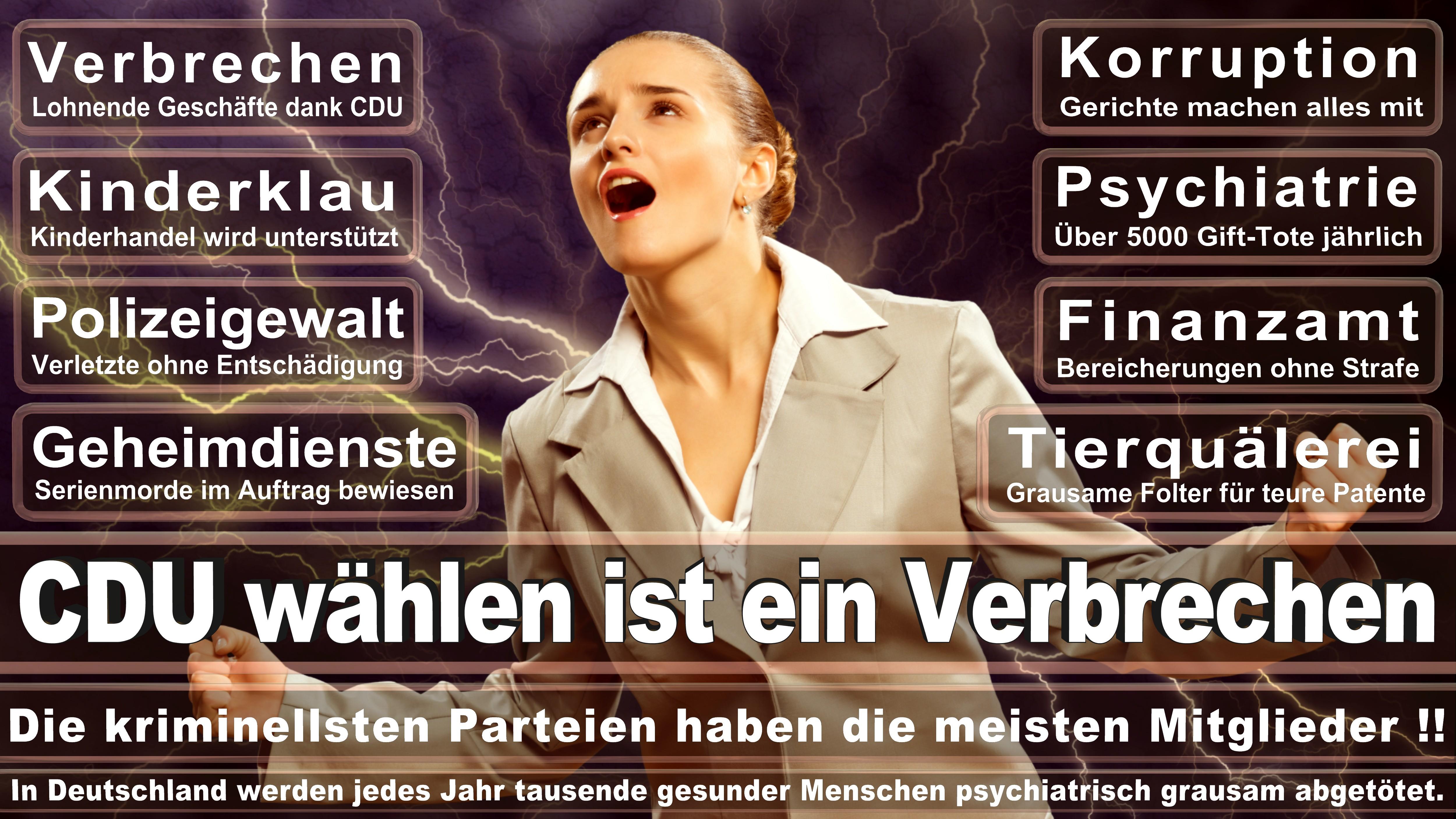 Bundestagswahl-2017-CDU-SPD-FDP (181)