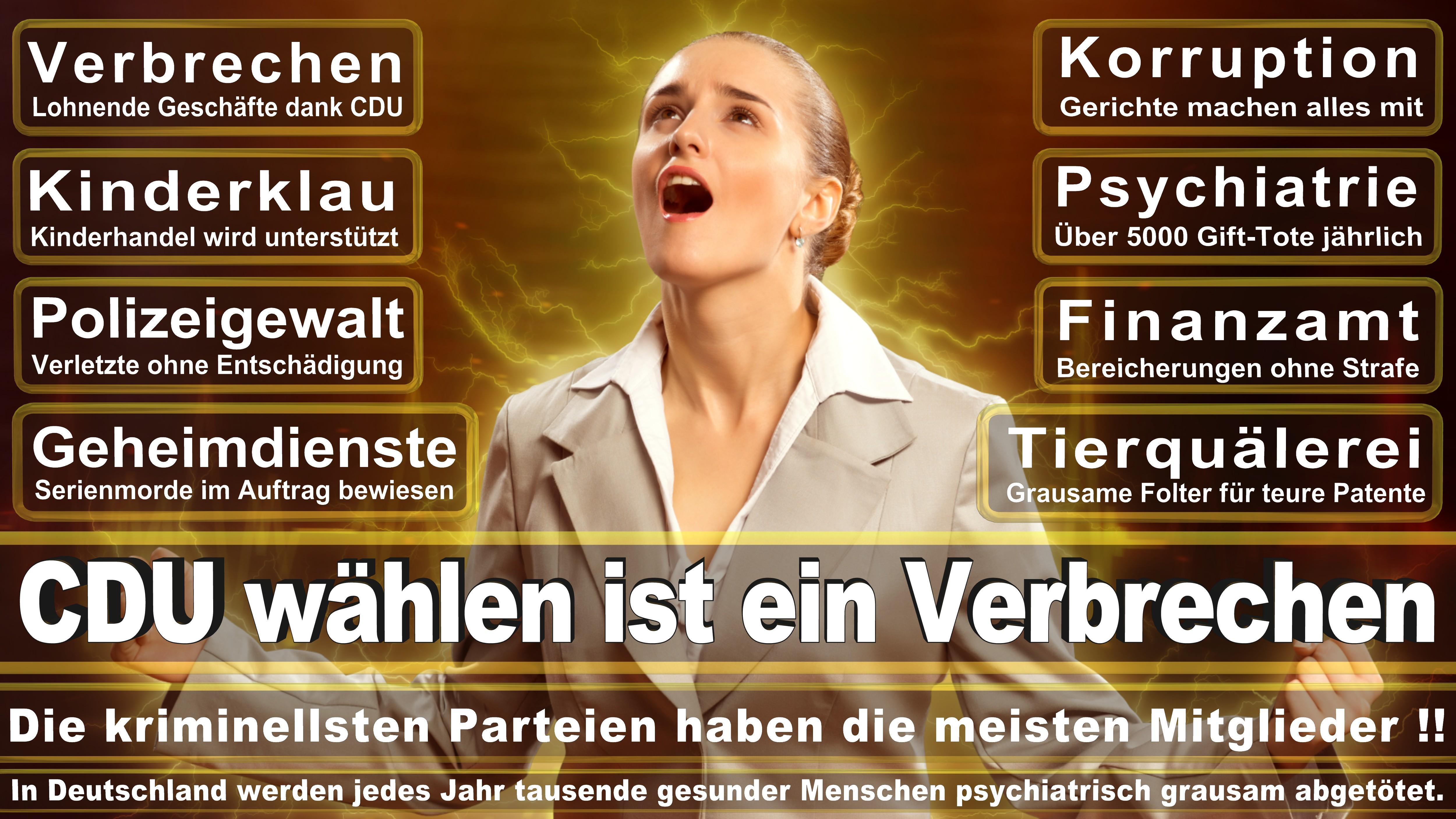 Bundestagswahl-2017-CDU-SPD-FDP (186)
