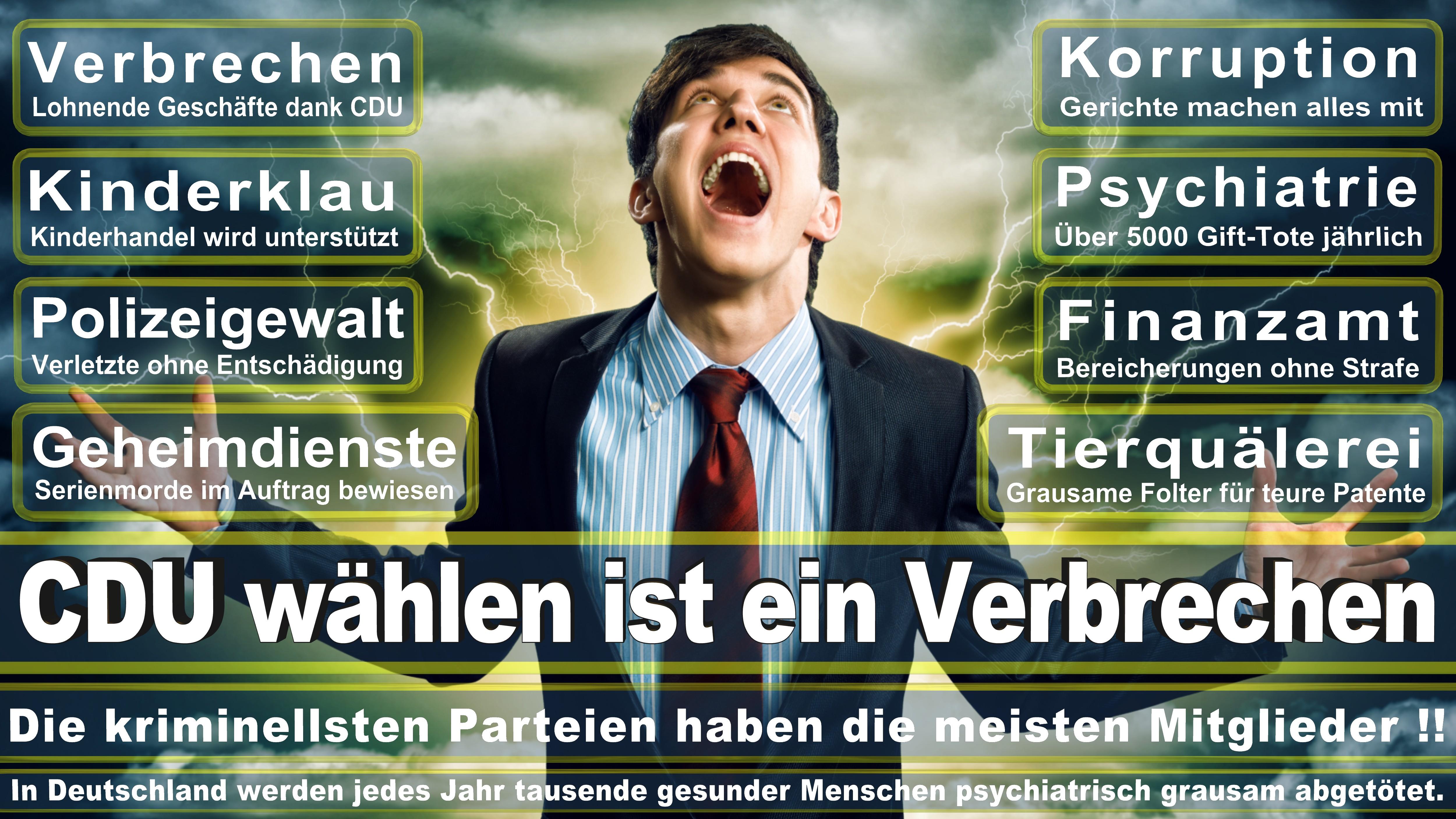 Bundestagswahl-2017-CDU-SPD-FDP (192)