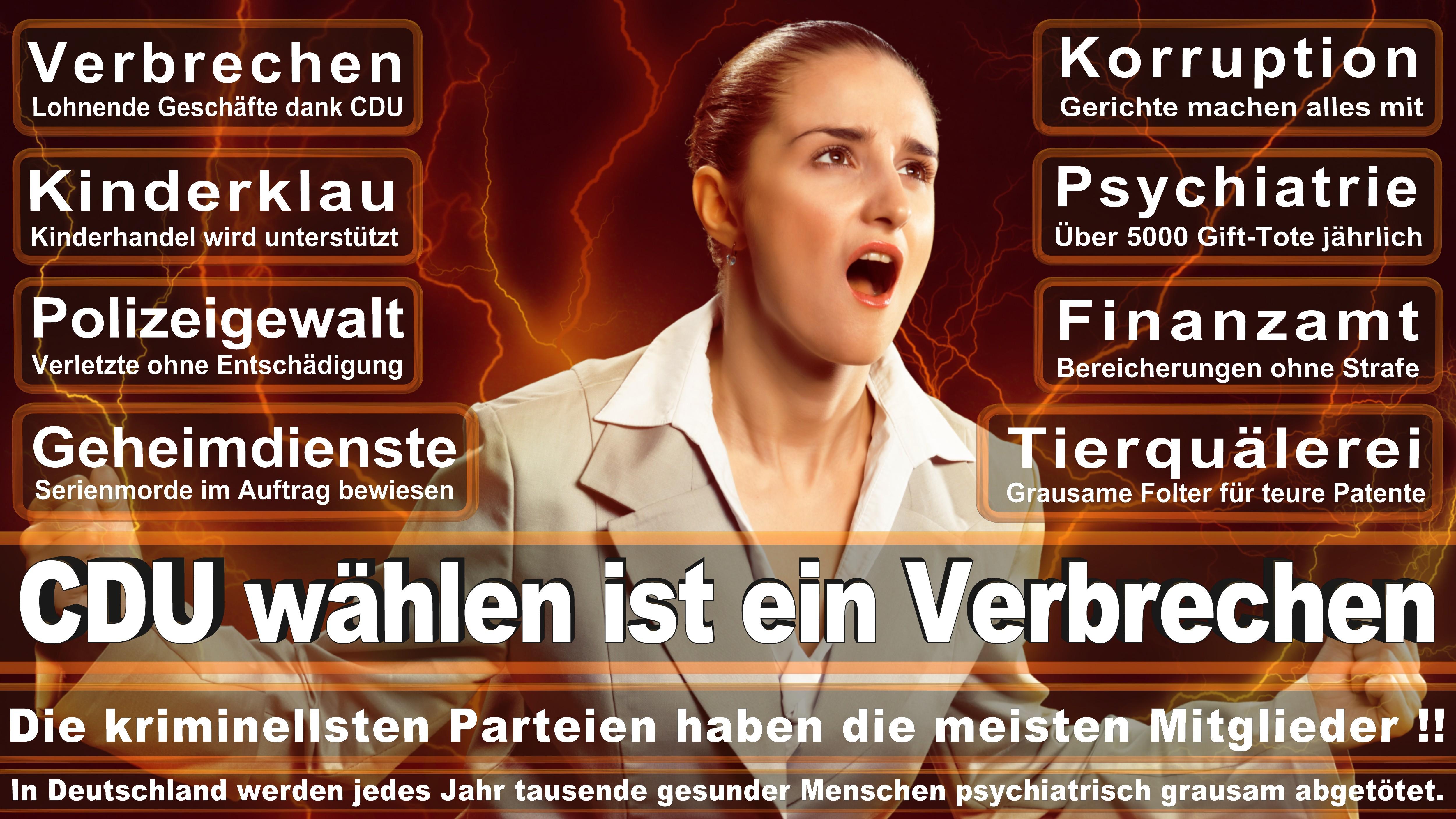 Bundestagswahl-2017-CDU-SPD-FDP (193)