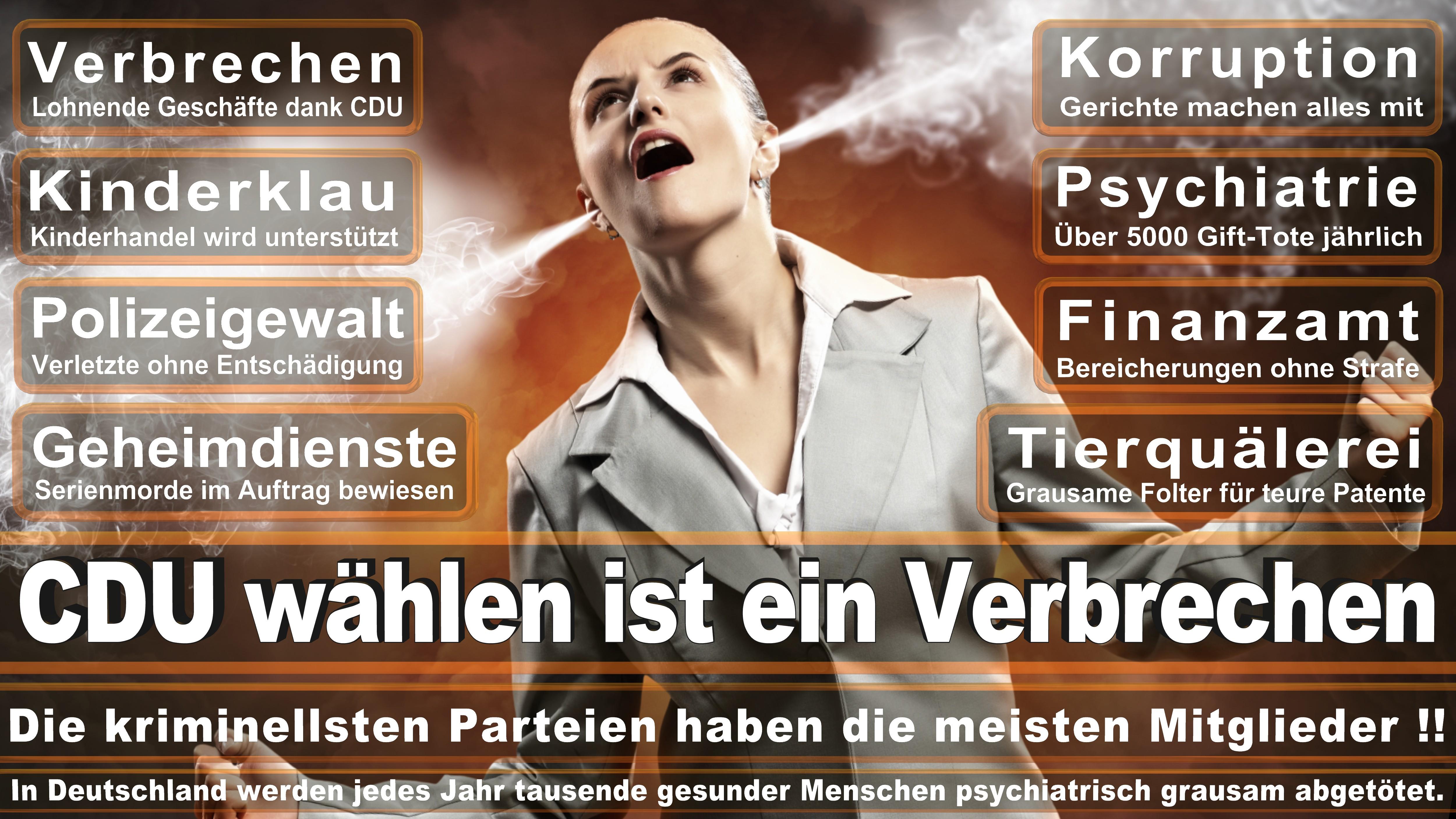 Bundestagswahl-2017-CDU-SPD-FDP (194)