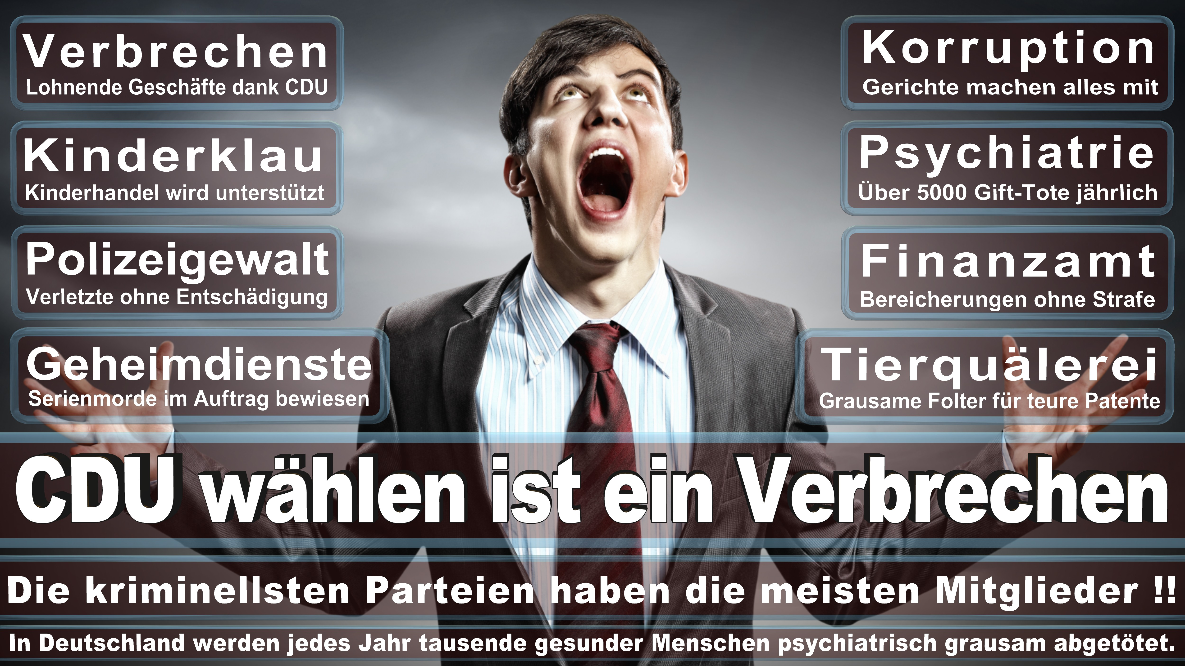 Bundestagswahl-2017-CDU-SPD-FDP (199)