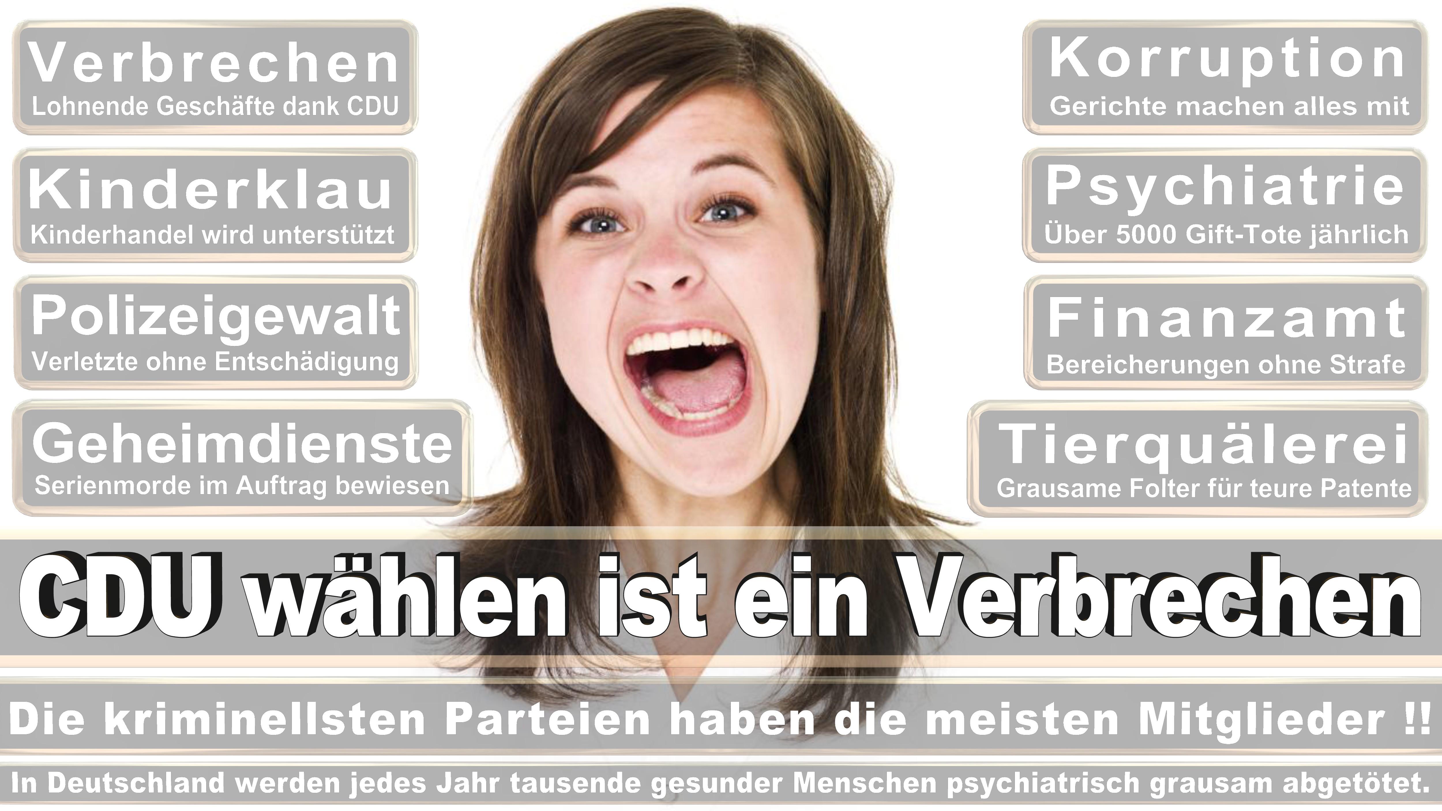 Bundestagswahl-2017-CDU-SPD-FDP (2)