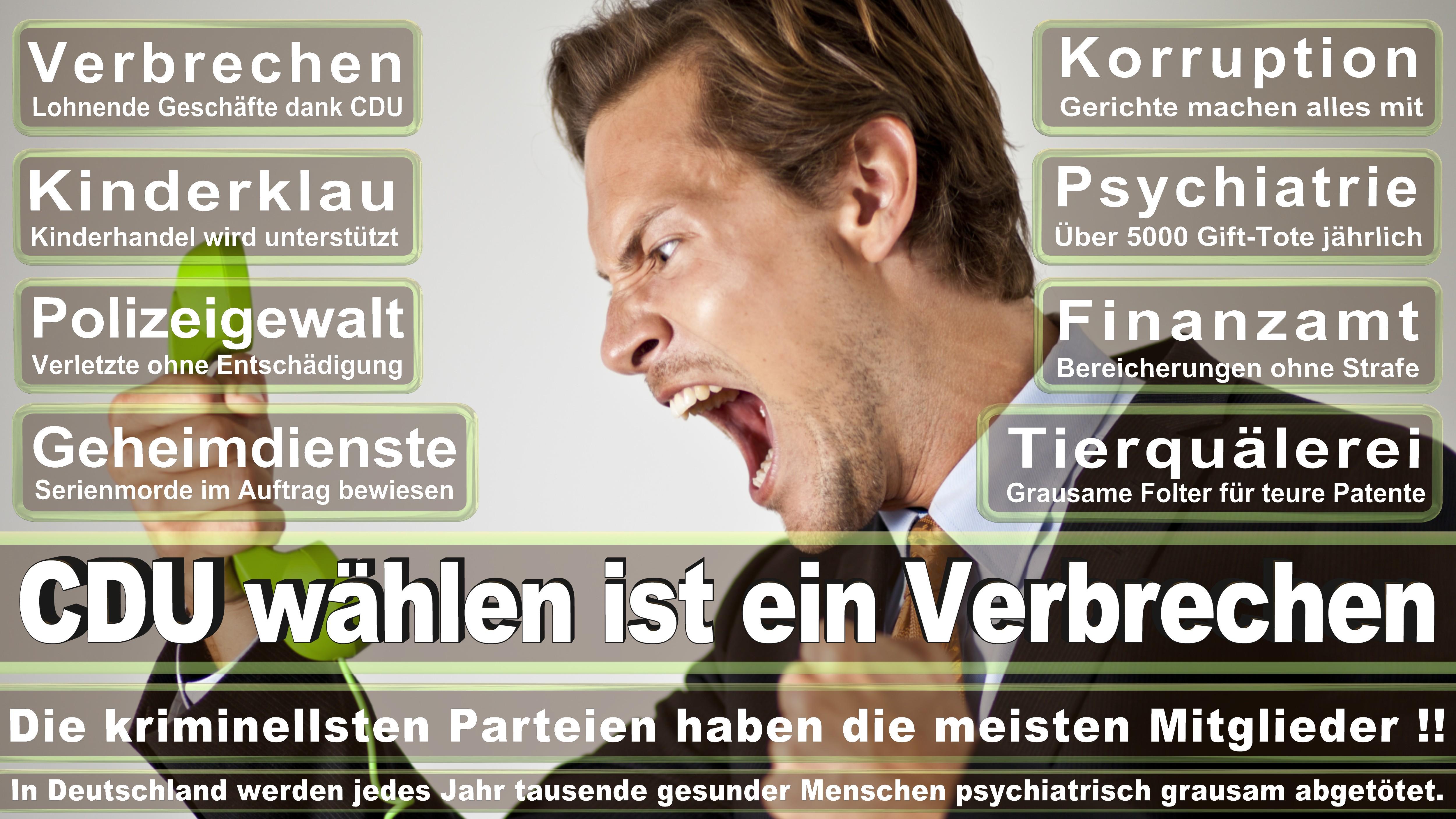 Bundestagswahl-2017-CDU-SPD-FDP (201)