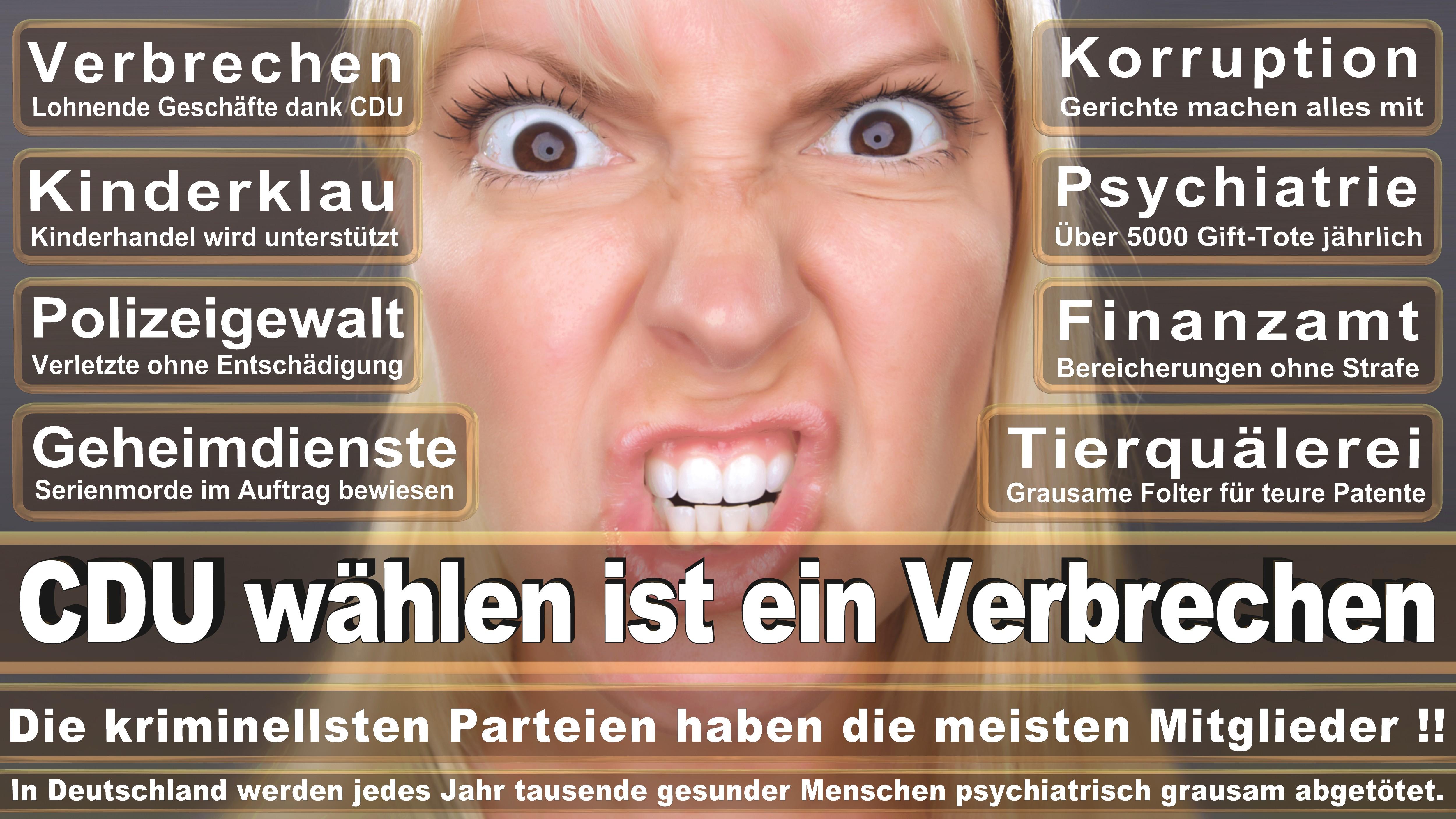 Bundestagswahl-2017-CDU-SPD-FDP (202)