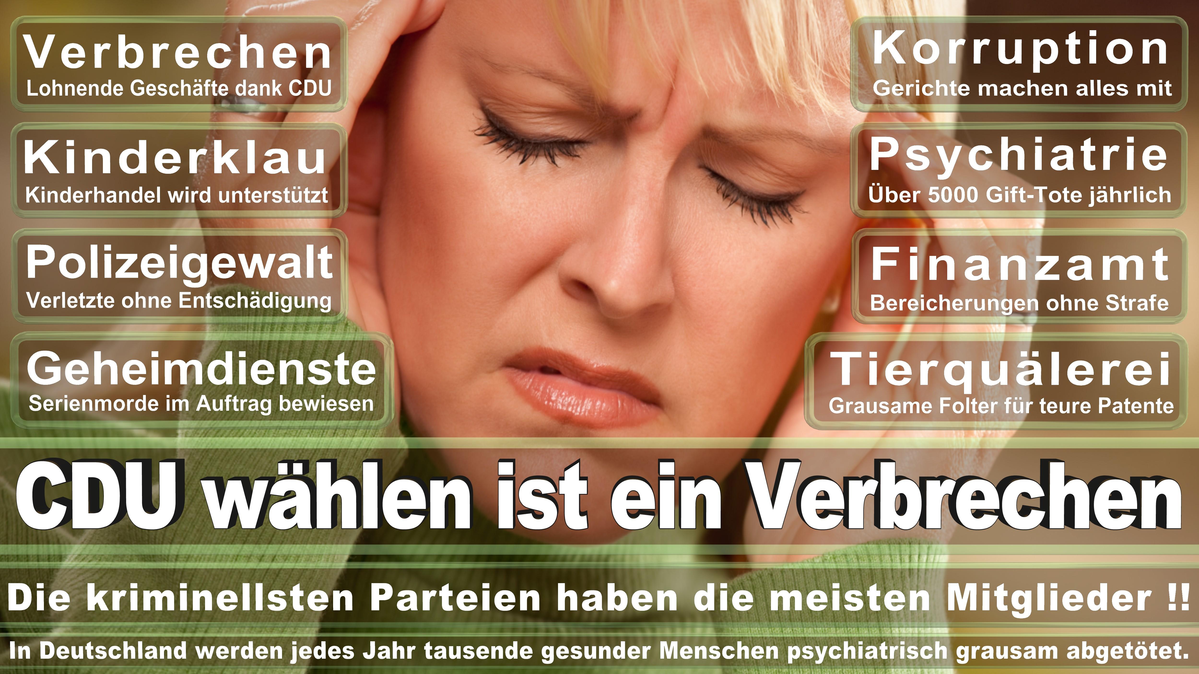 Bundestagswahl-2017-CDU-SPD-FDP (204)