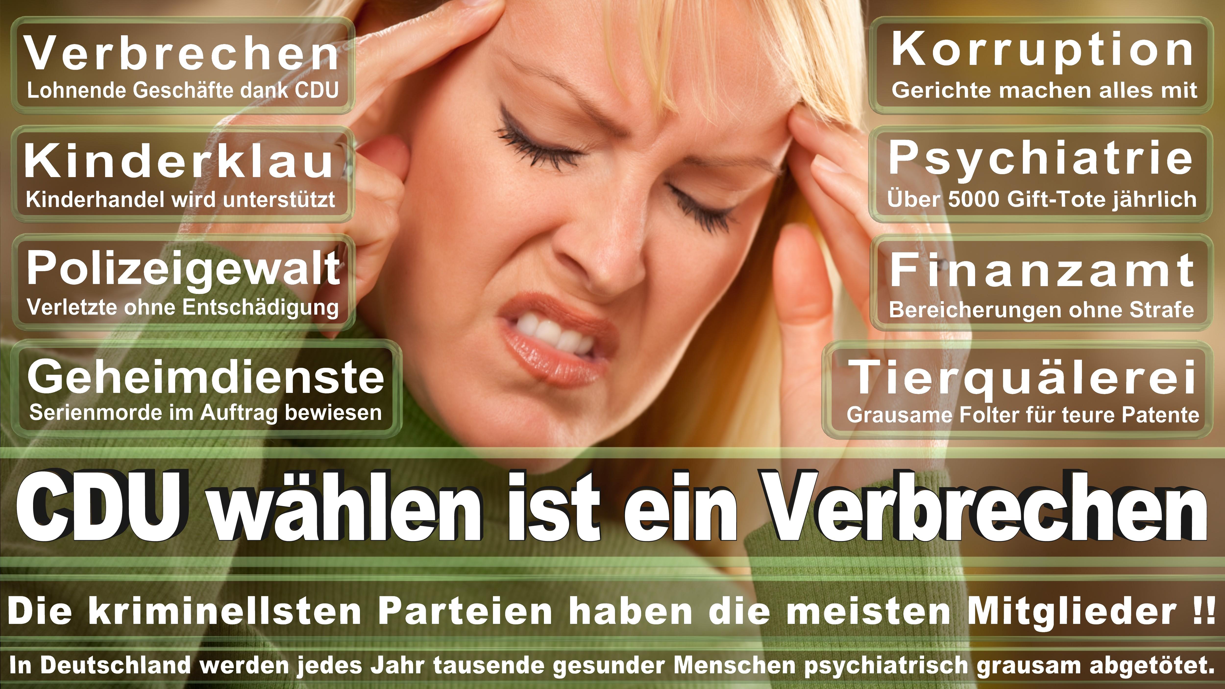 Bundestagswahl-2017-CDU-SPD-FDP (205)