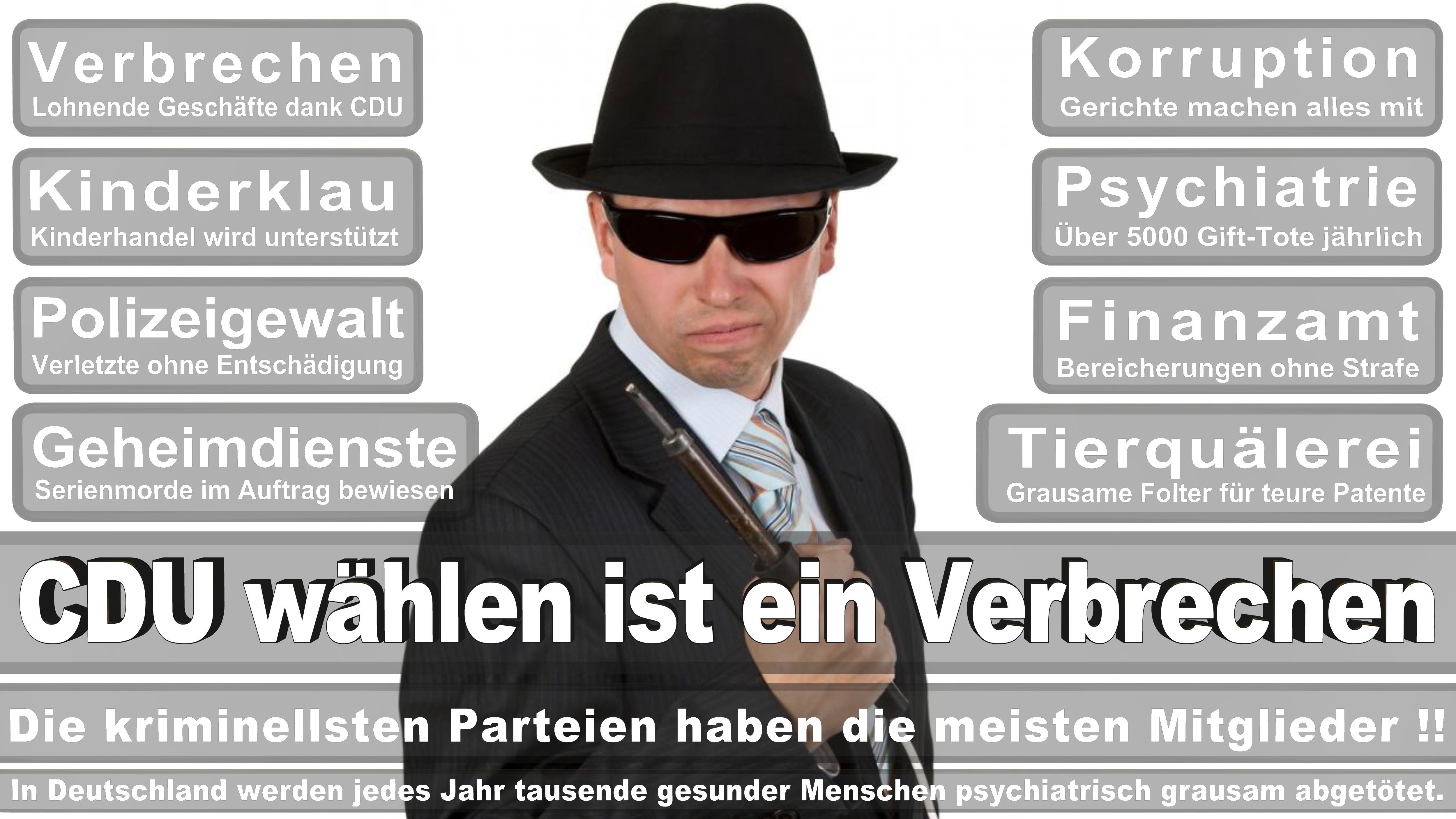 Bundestagswahl-2017-CDU-SPD-FDP (21)