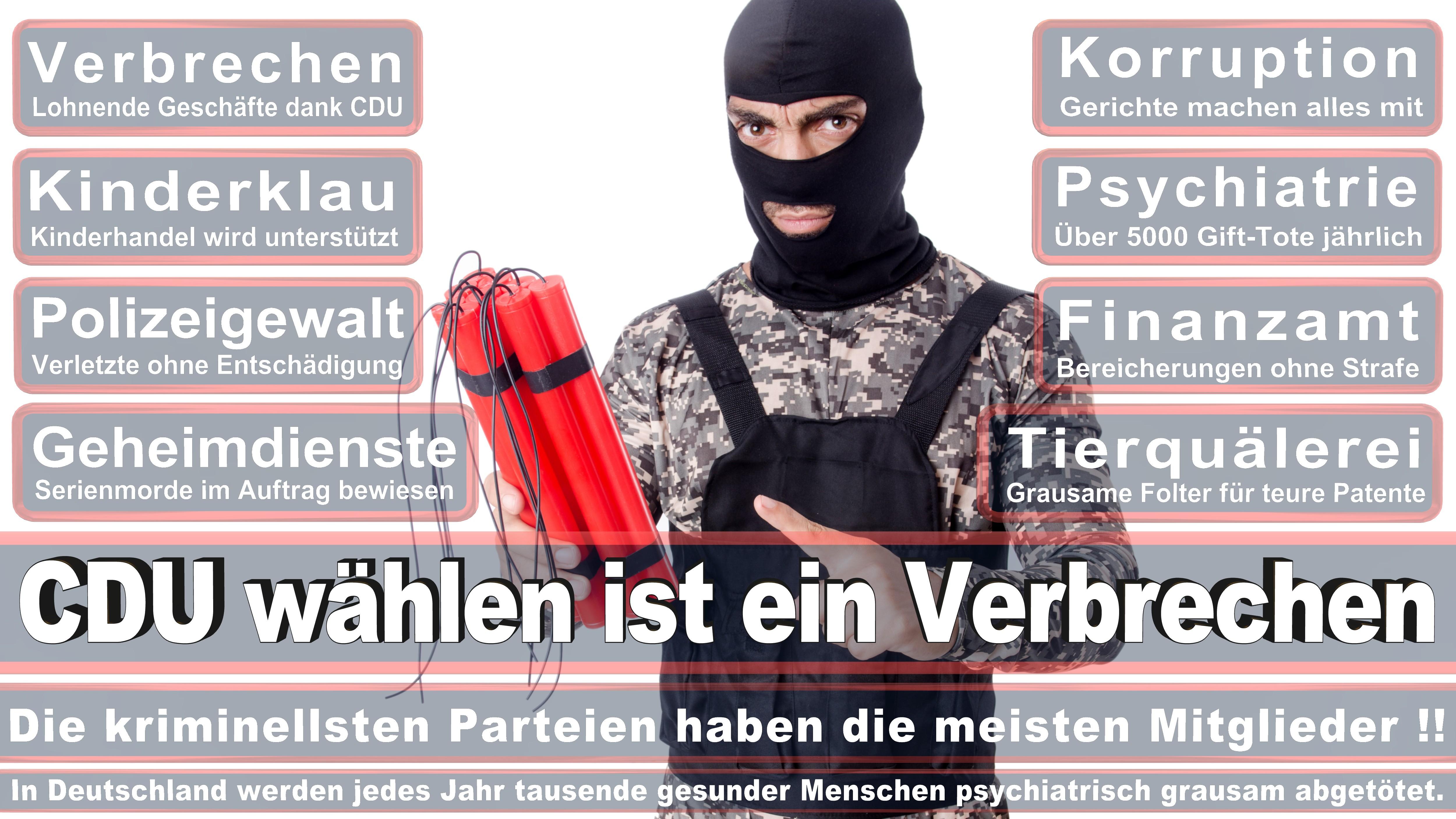 Bundestagswahl-2017-CDU-SPD-FDP (213)