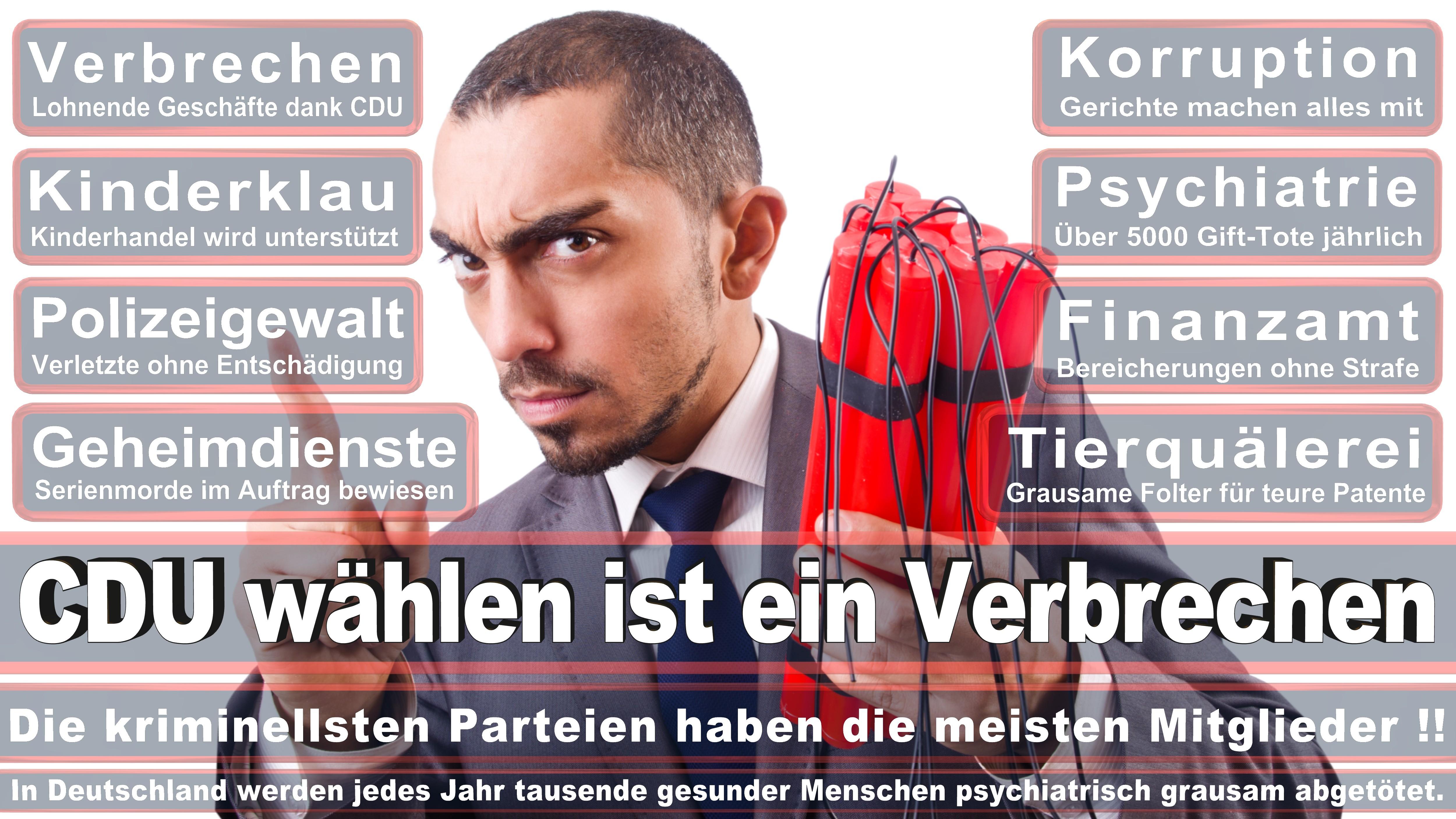 Bundestagswahl-2017-CDU-SPD-FDP (214)