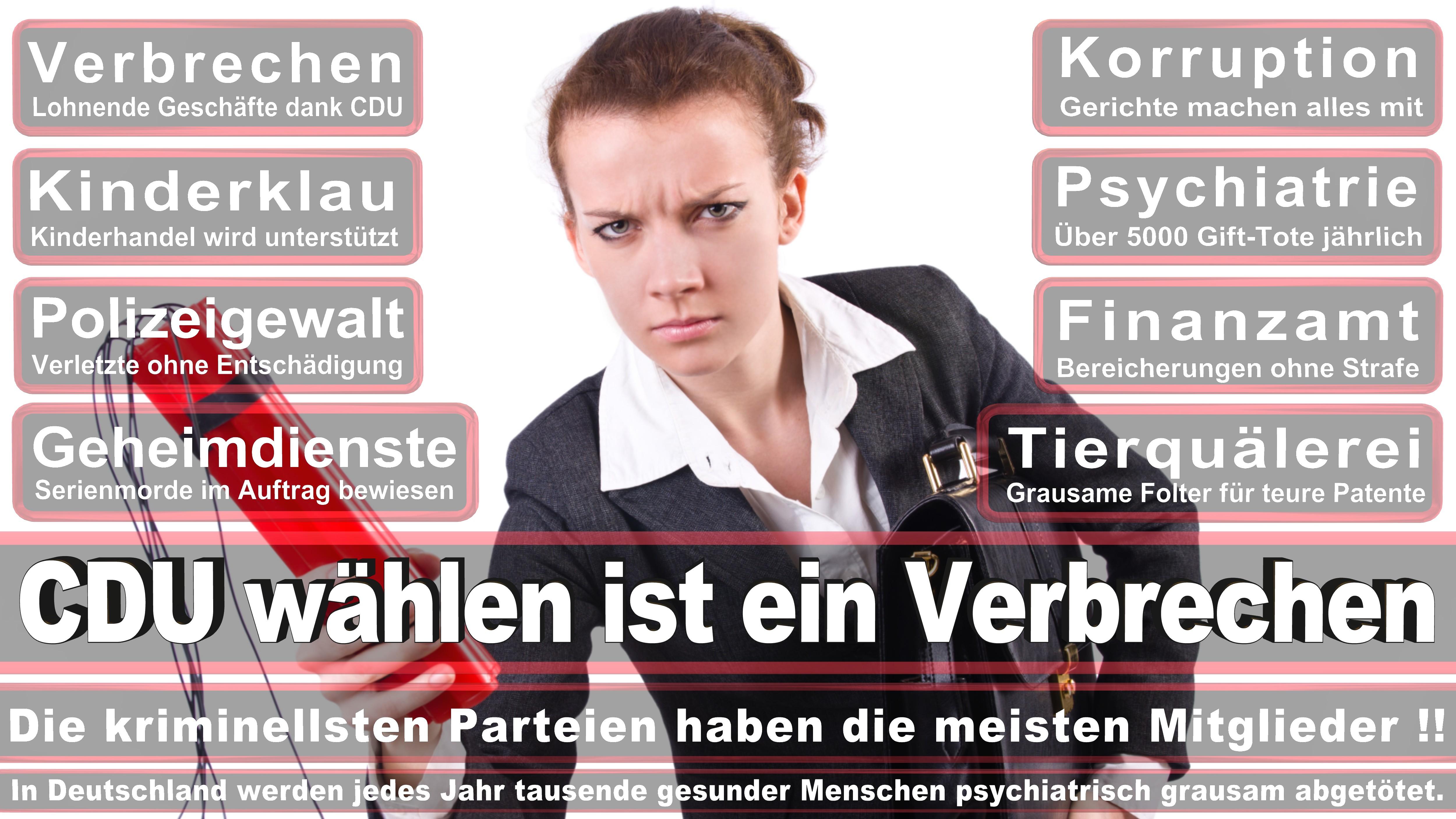 Bundestagswahl-2017-CDU-SPD-FDP (219)