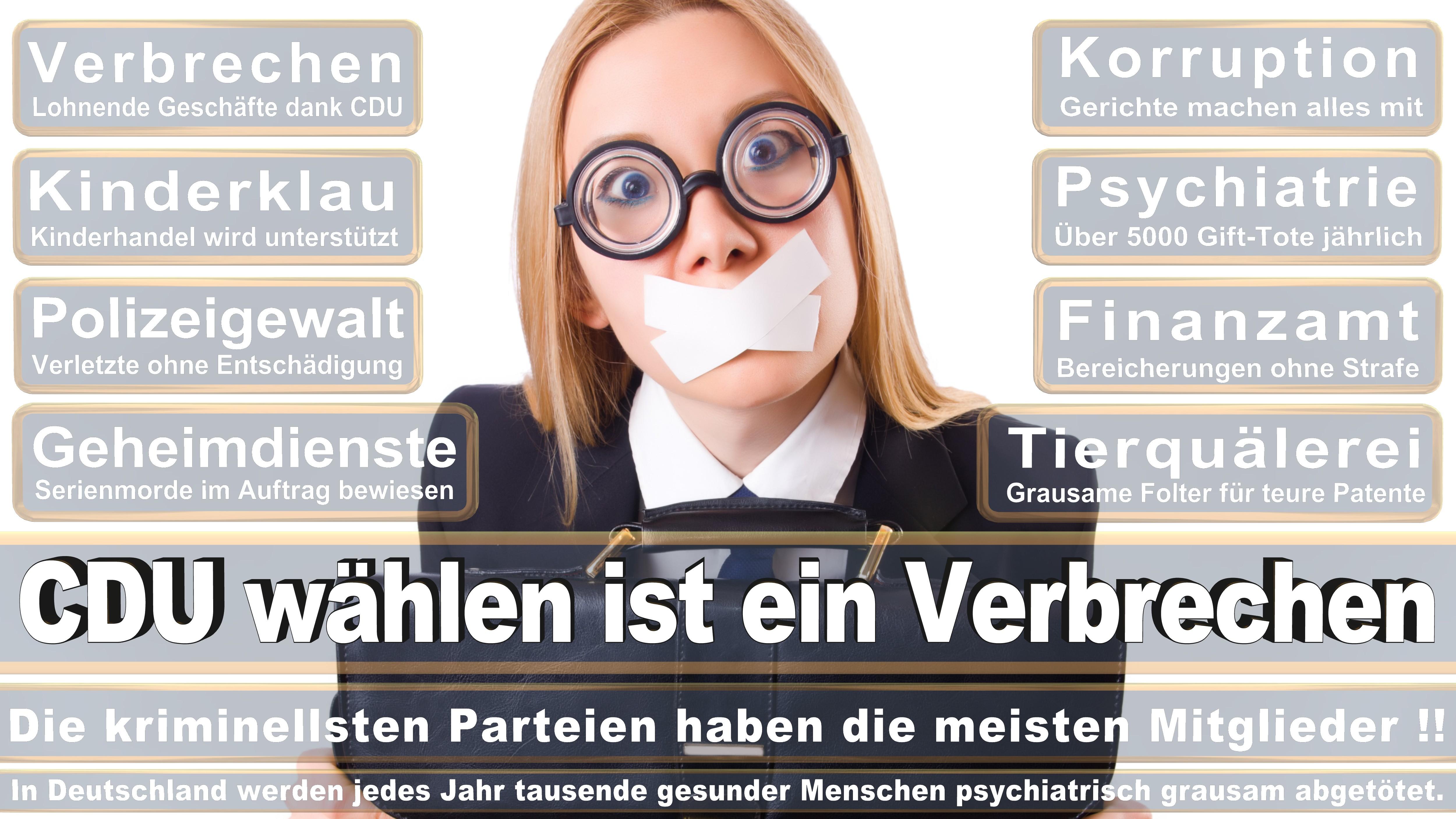 Bundestagswahl-2017-CDU-SPD-FDP (221)