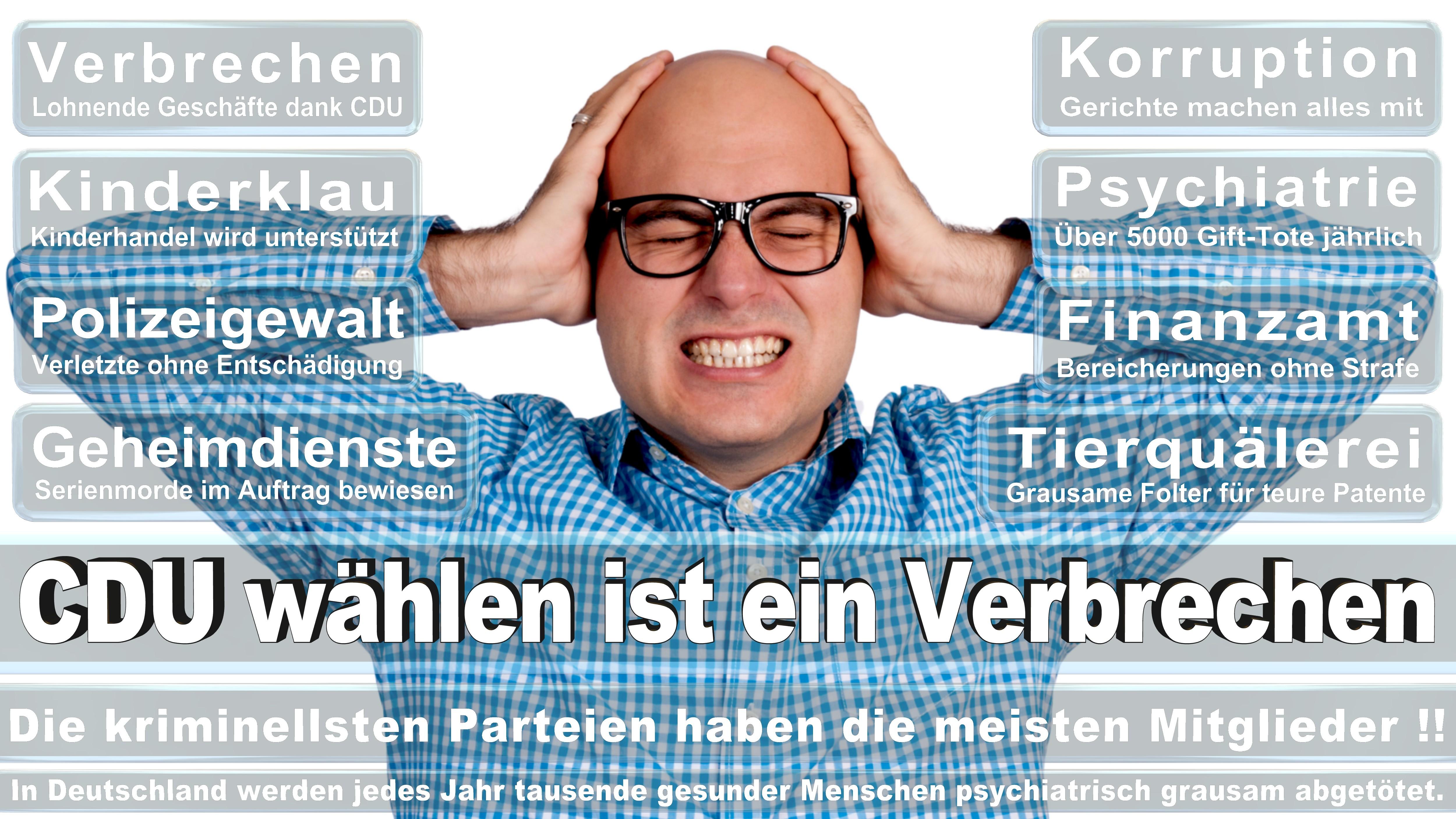 Bundestagswahl-2017-CDU-SPD-FDP (235)
