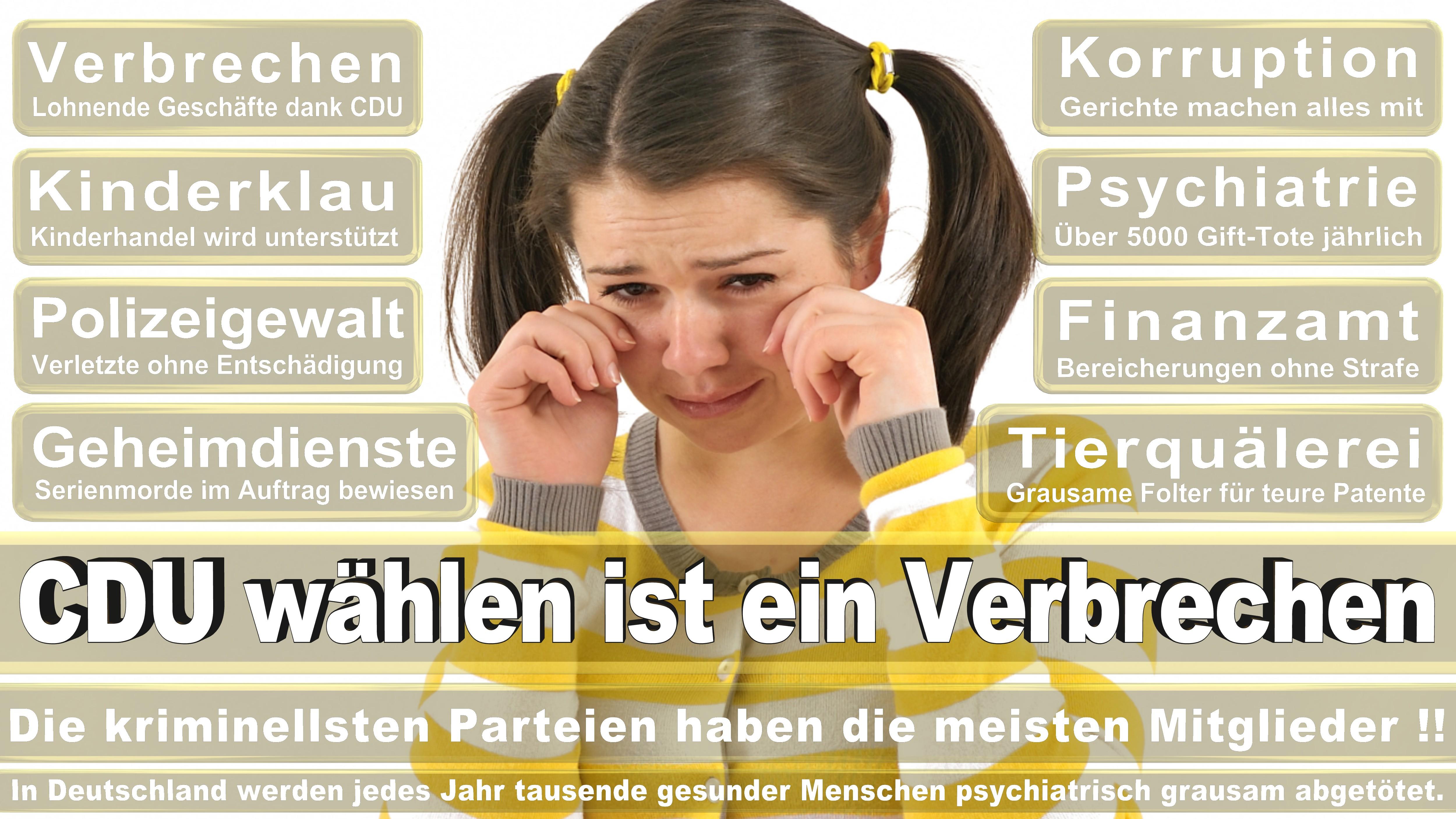 Bundestagswahl-2017-CDU-SPD-FDP (238)