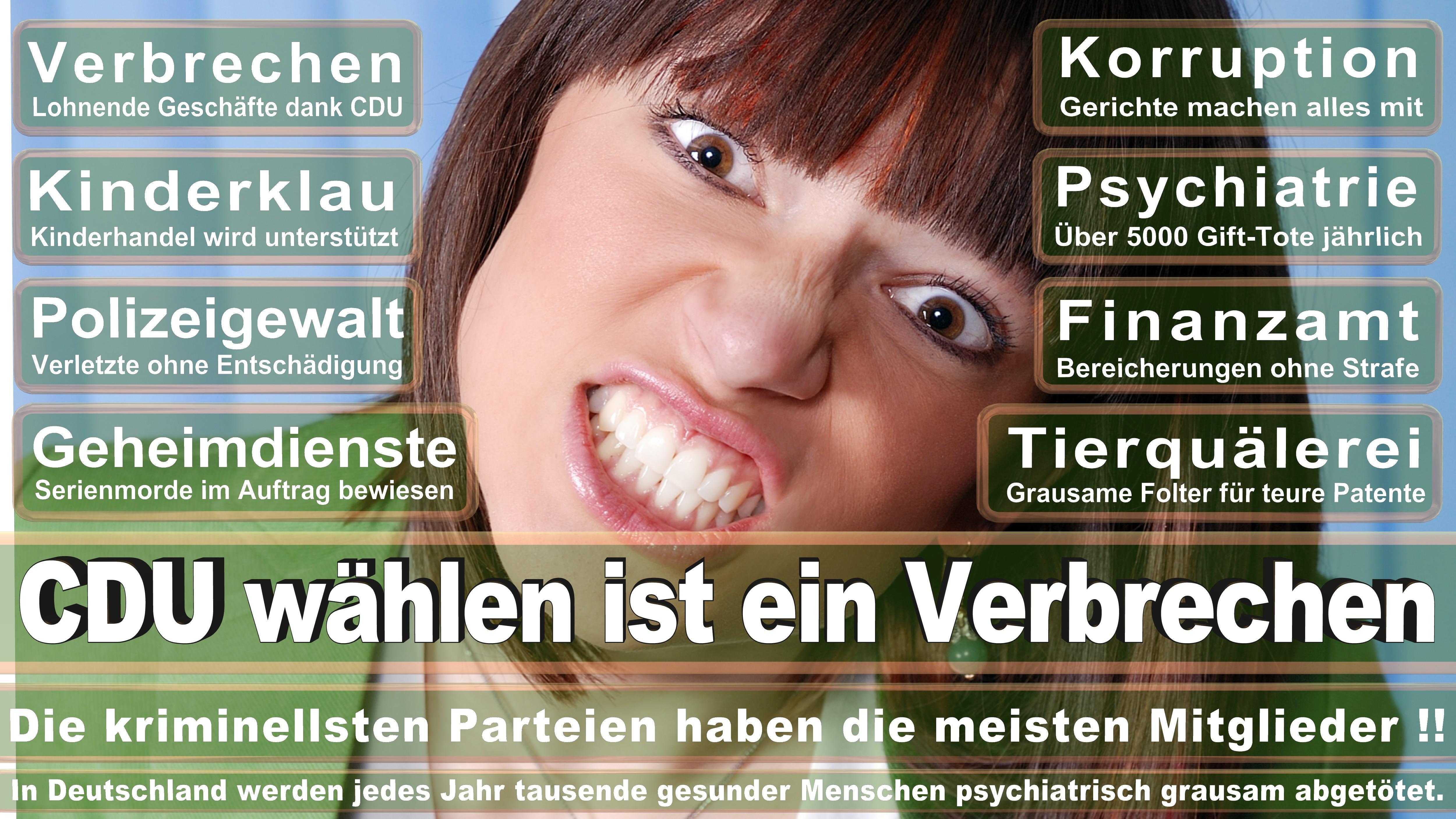Bundestagswahl-2017-CDU-SPD-FDP (241)