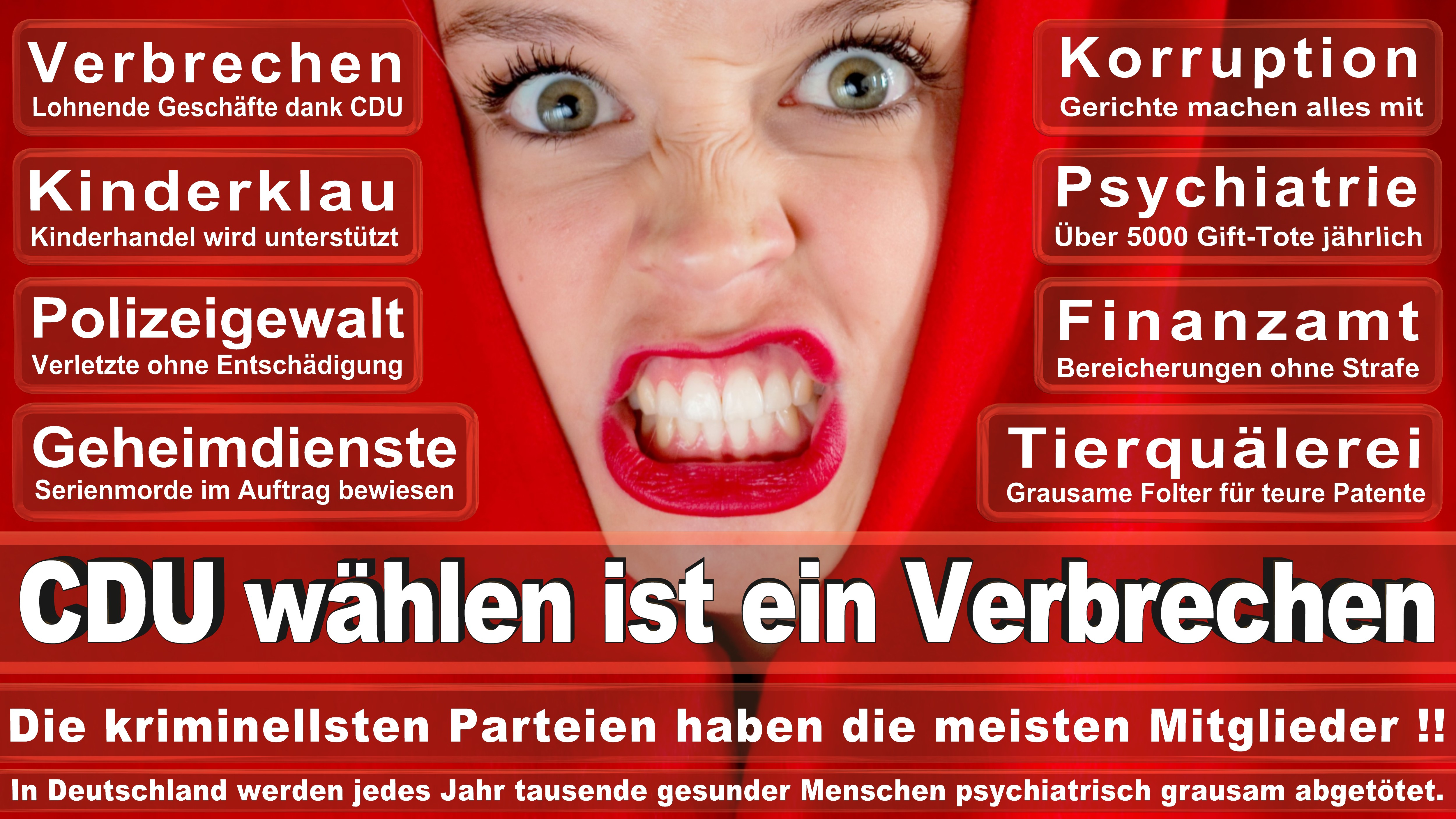 Bundestagswahl-2017-CDU-SPD-FDP (244)