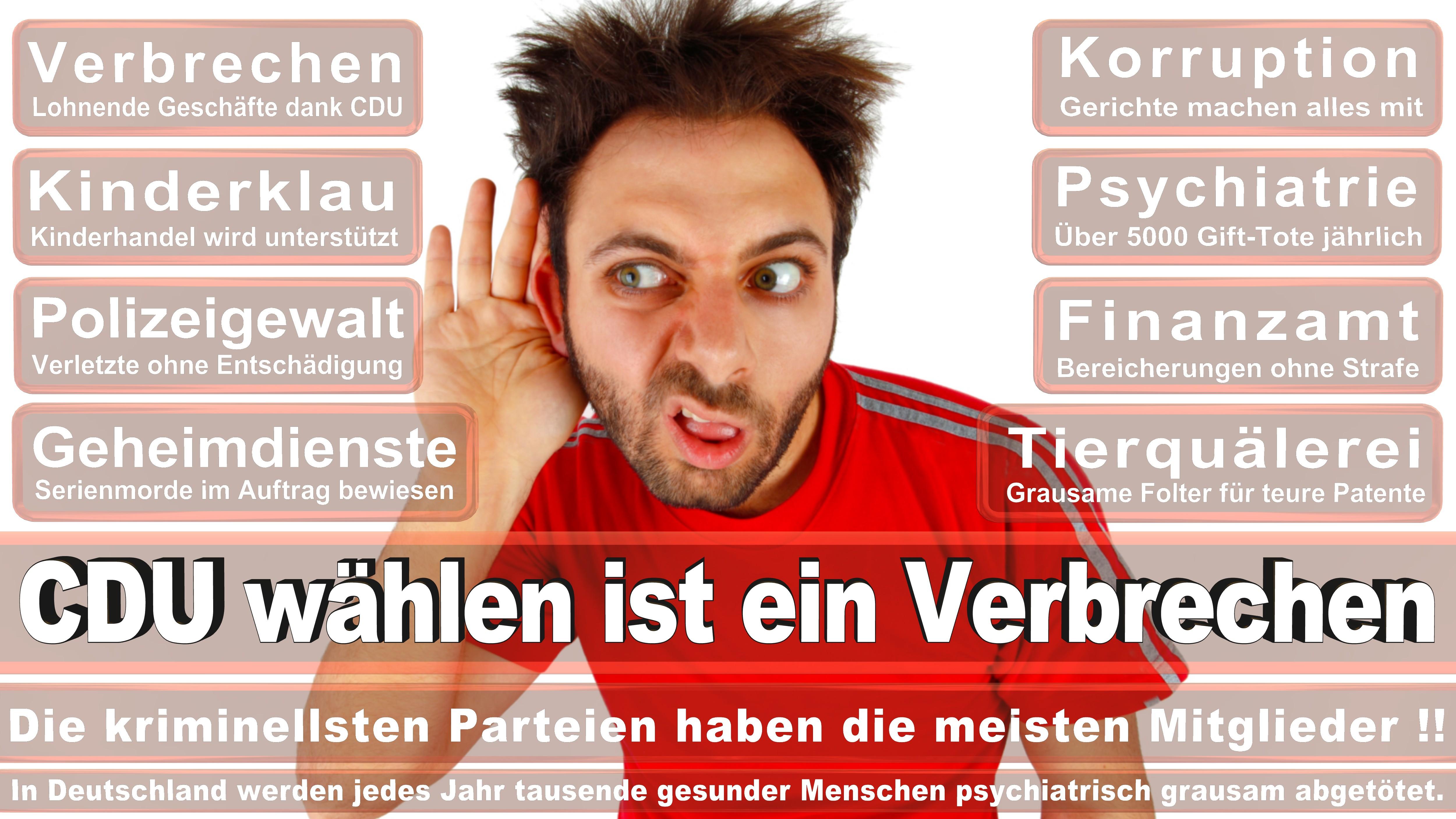 Bundestagswahl-2017-CDU-SPD-FDP (245)
