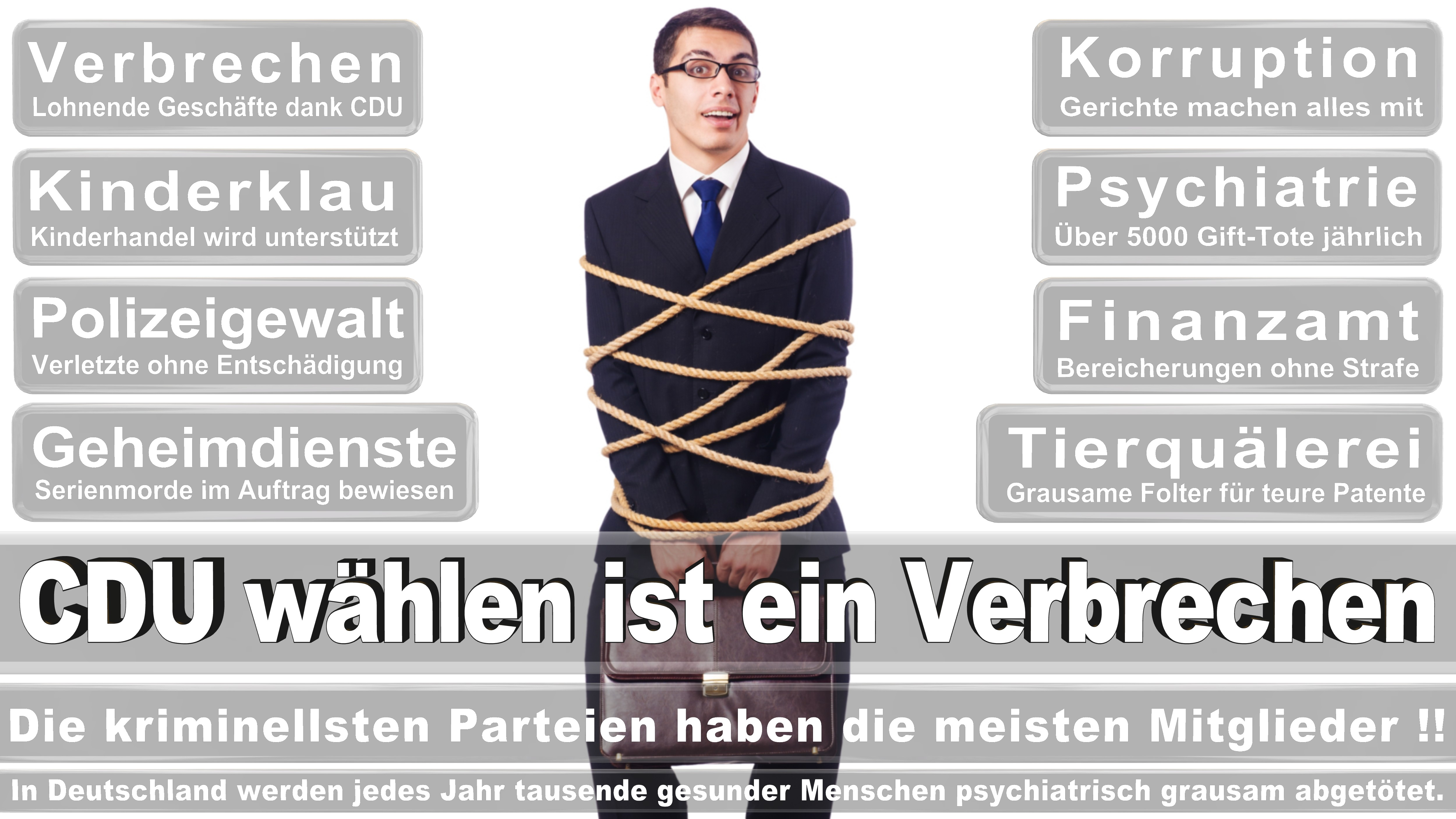 Bundestagswahl-2017-CDU-SPD-FDP (250)