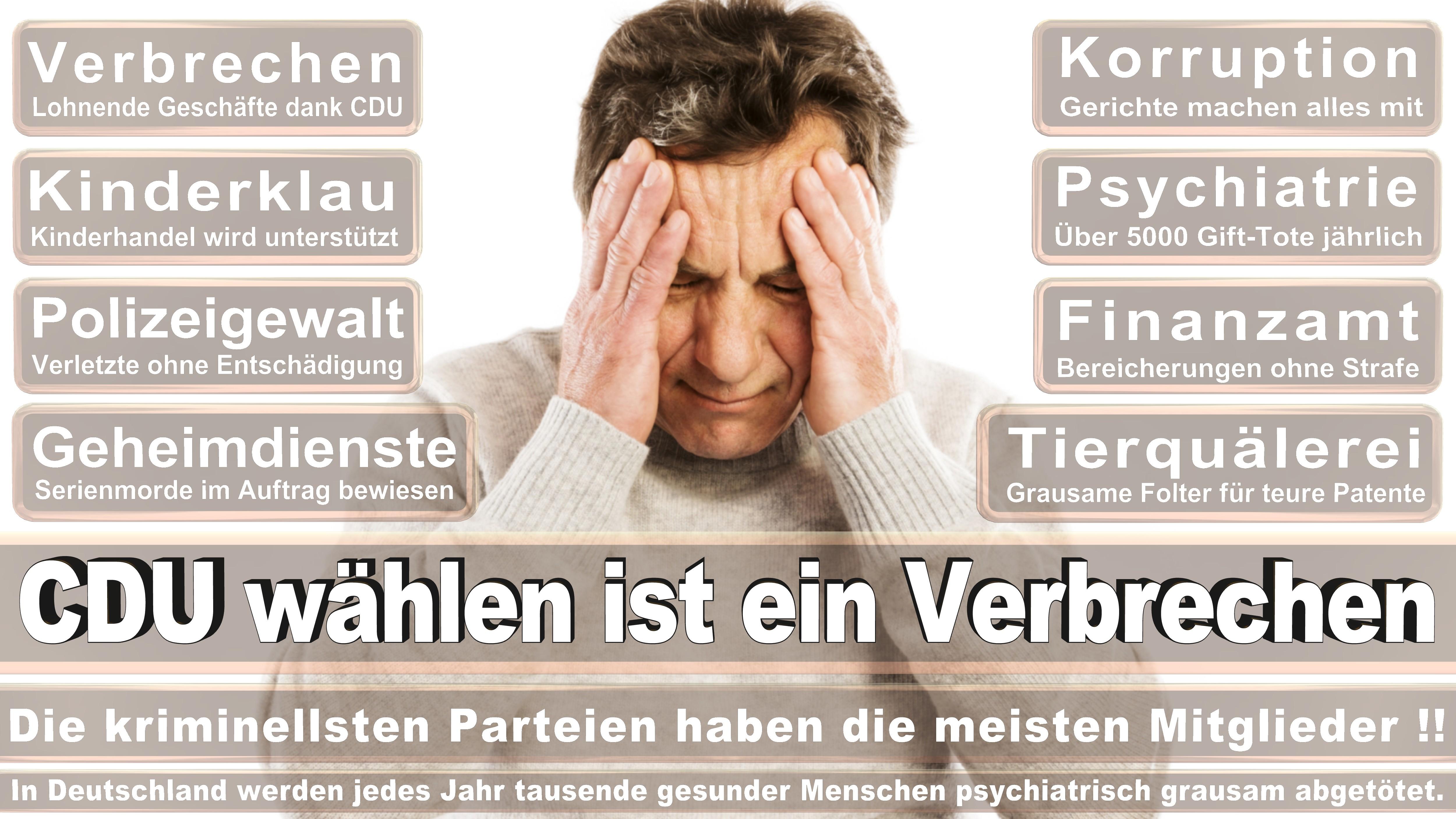 Bundestagswahl-2017-CDU-SPD-FDP (255)