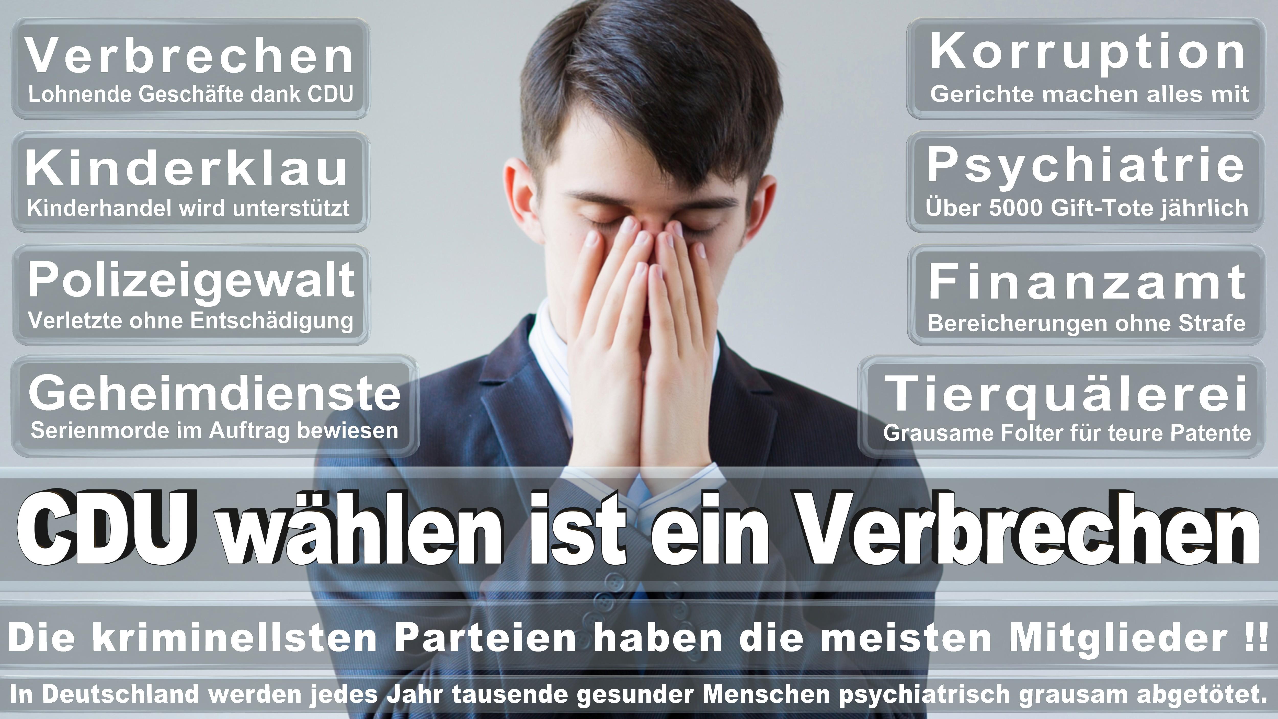 Bundestagswahl-2017-CDU-SPD-FDP (258)