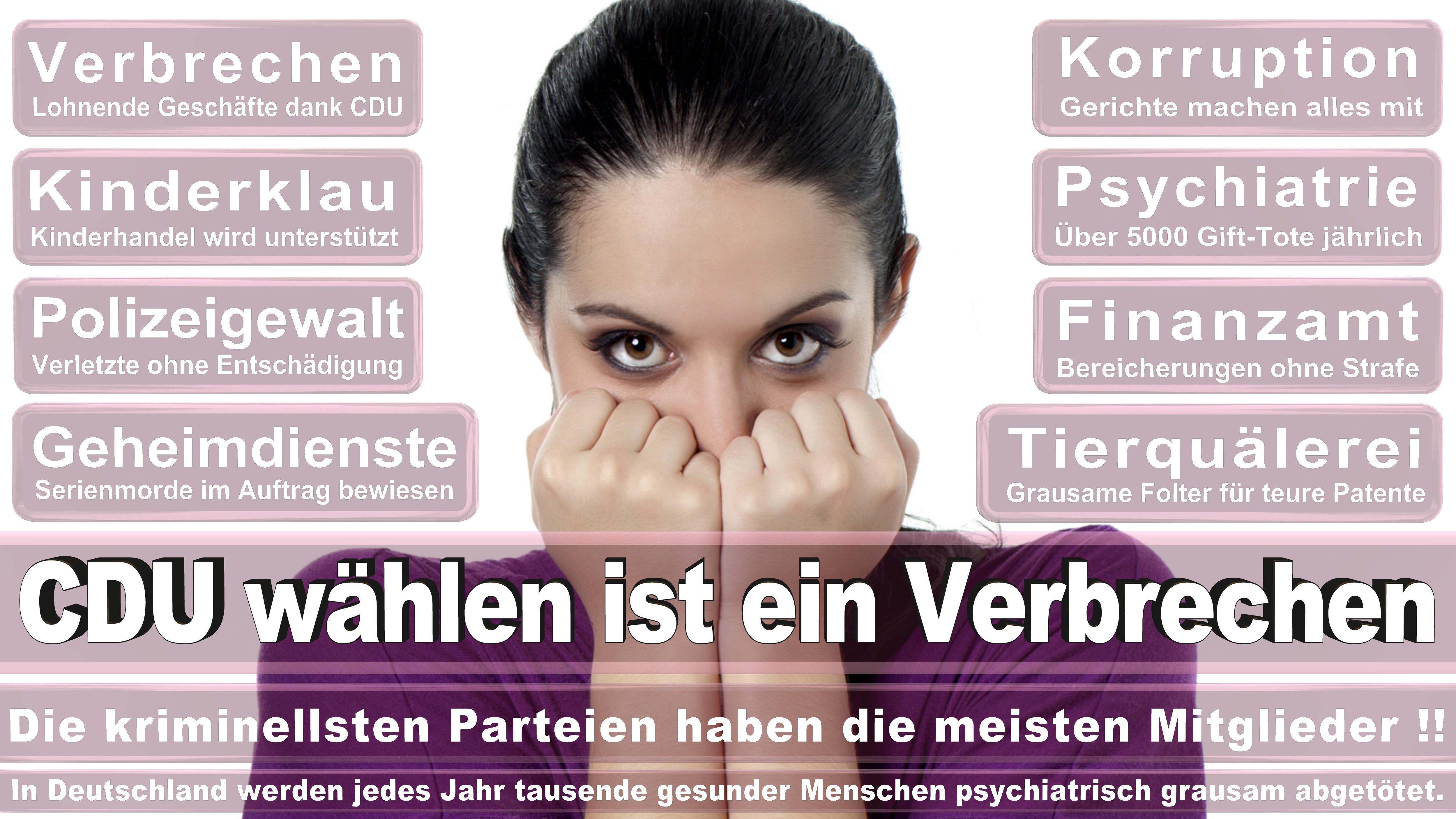 Bundestagswahl-2017-CDU-SPD-FDP (263)