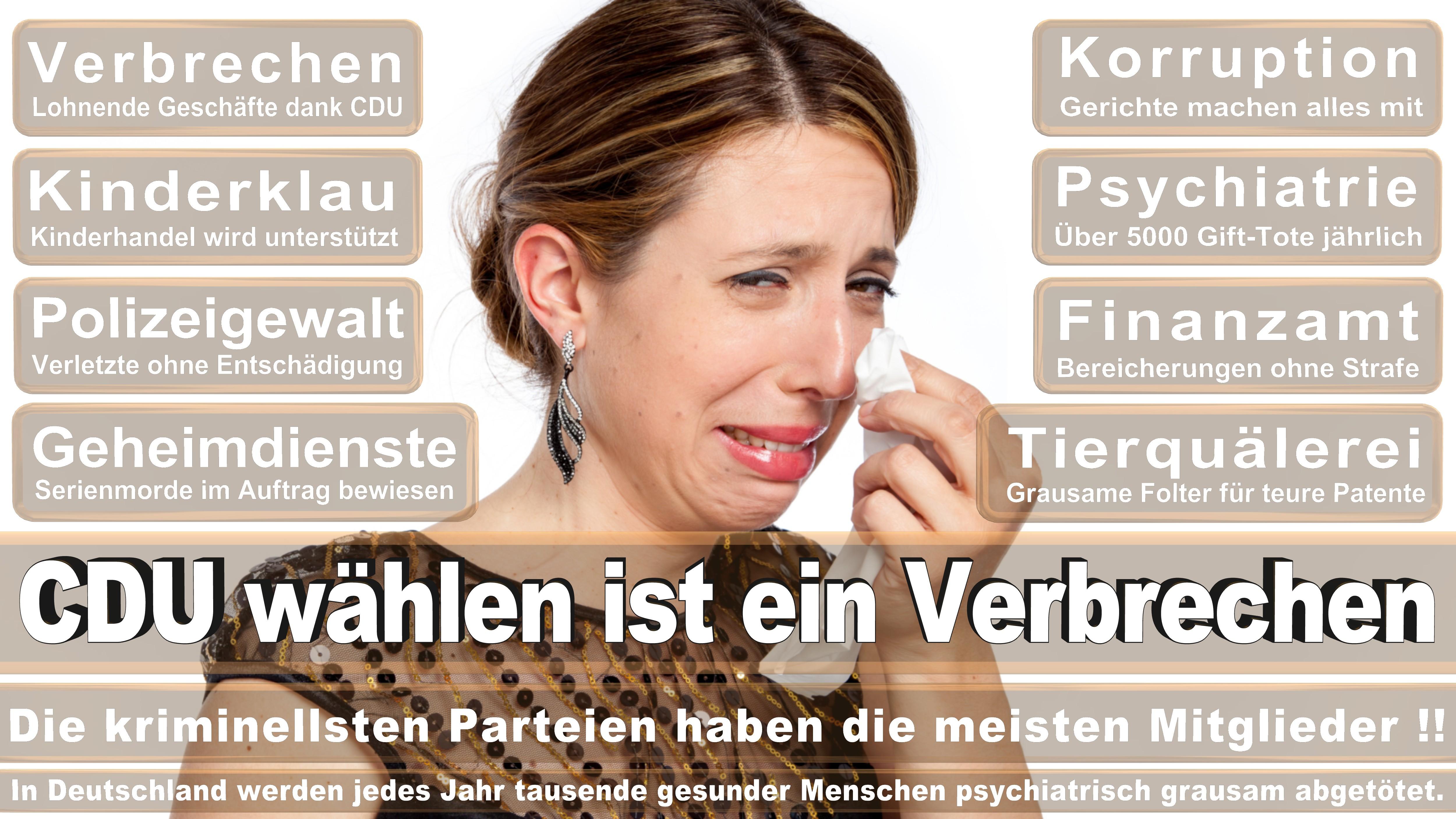 Bundestagswahl-2017-CDU-SPD-FDP (265)