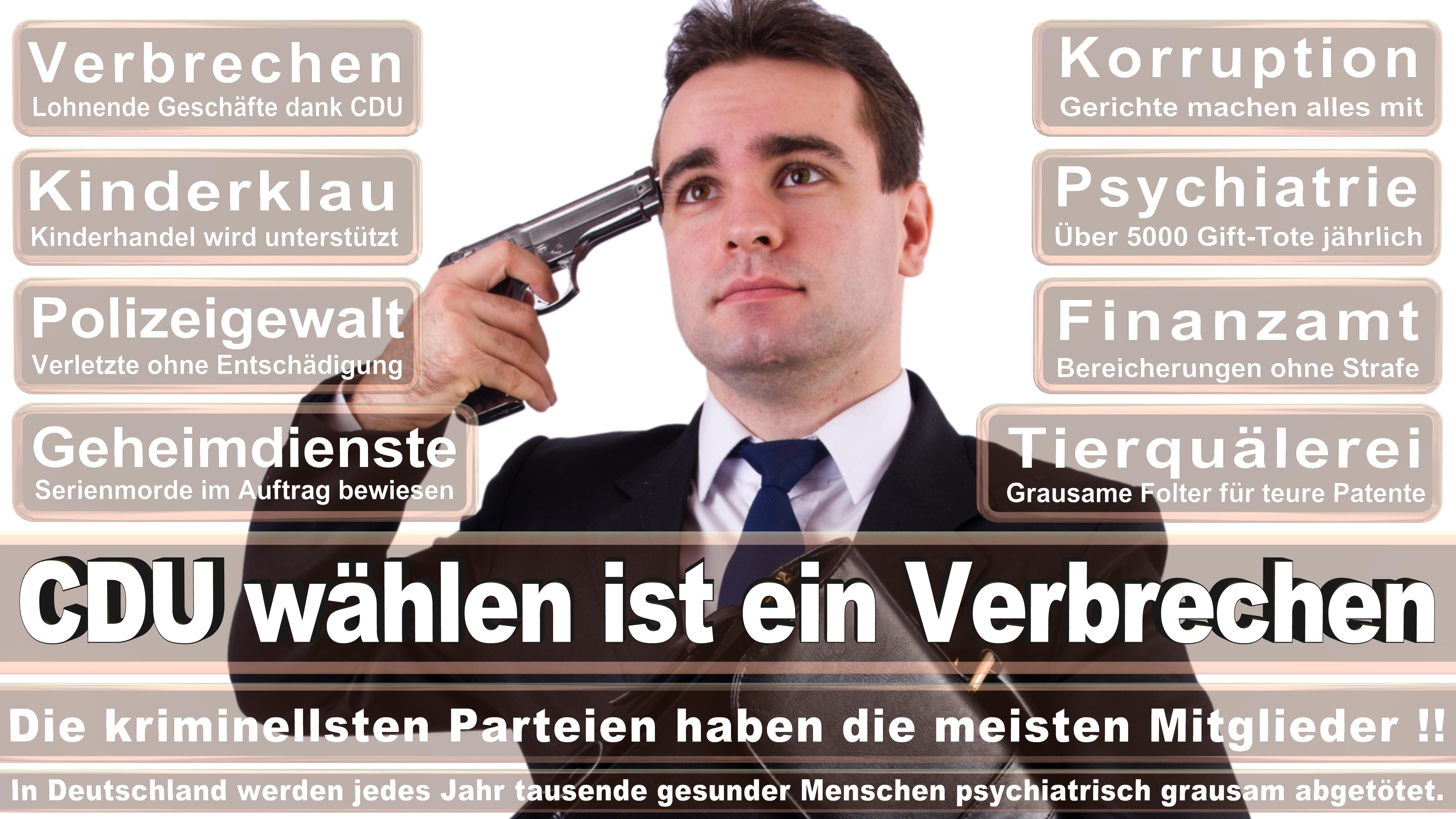 Bundestagswahl-2017-CDU-SPD-FDP (274)