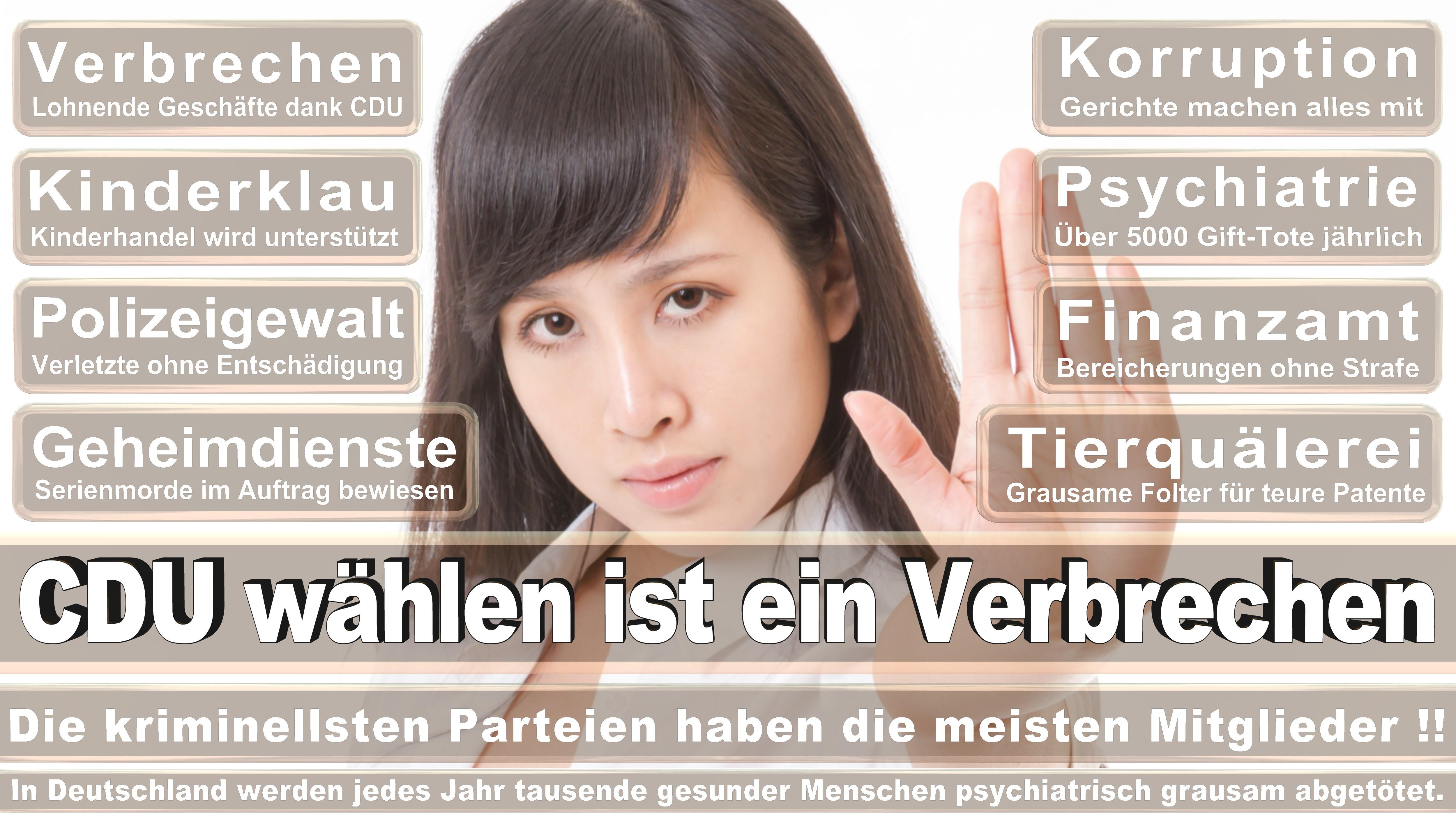 Bundestagswahl-2017-CDU-SPD-FDP (278)