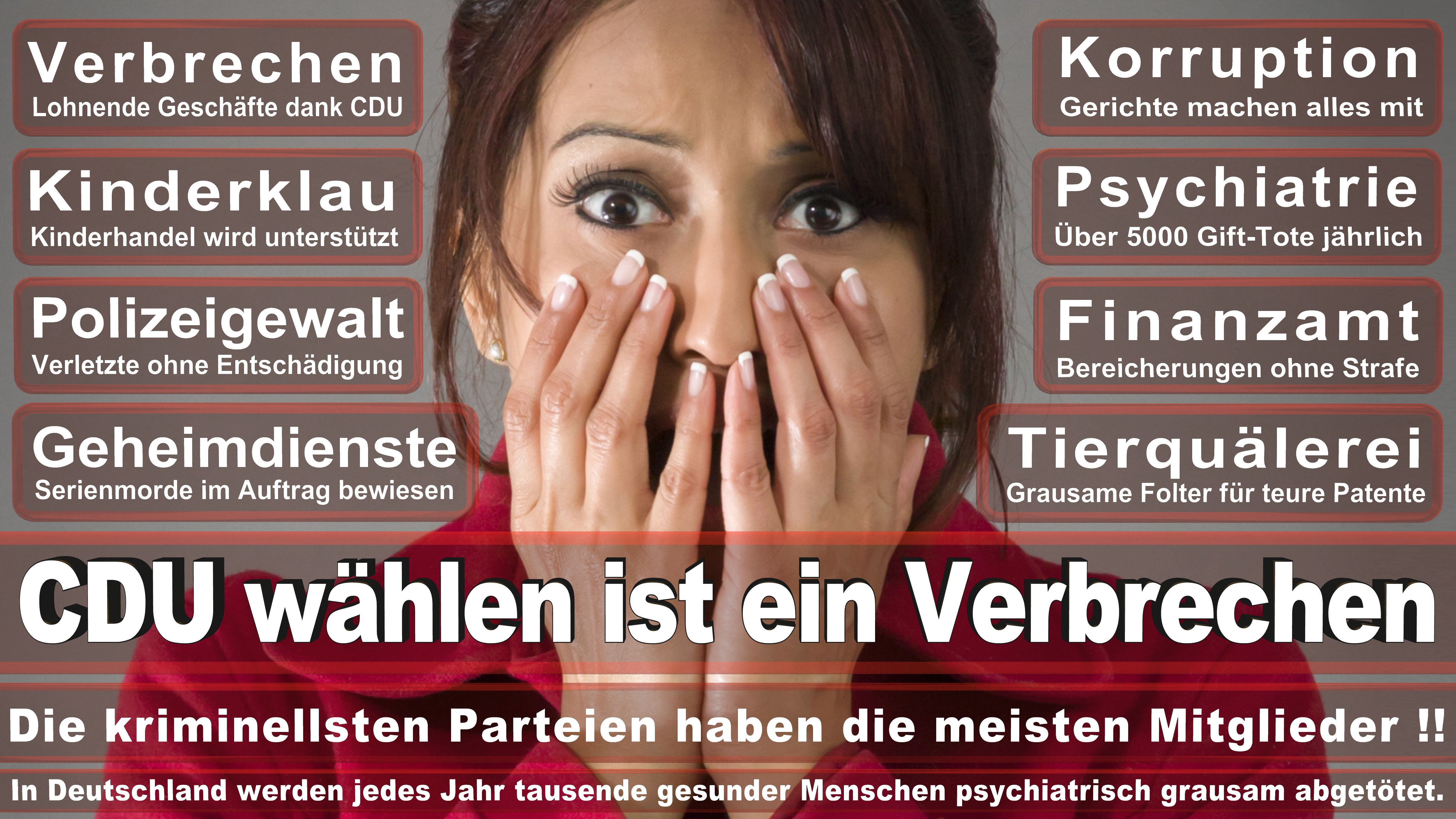 Bundestagswahl-2017-CDU-SPD-FDP (284)