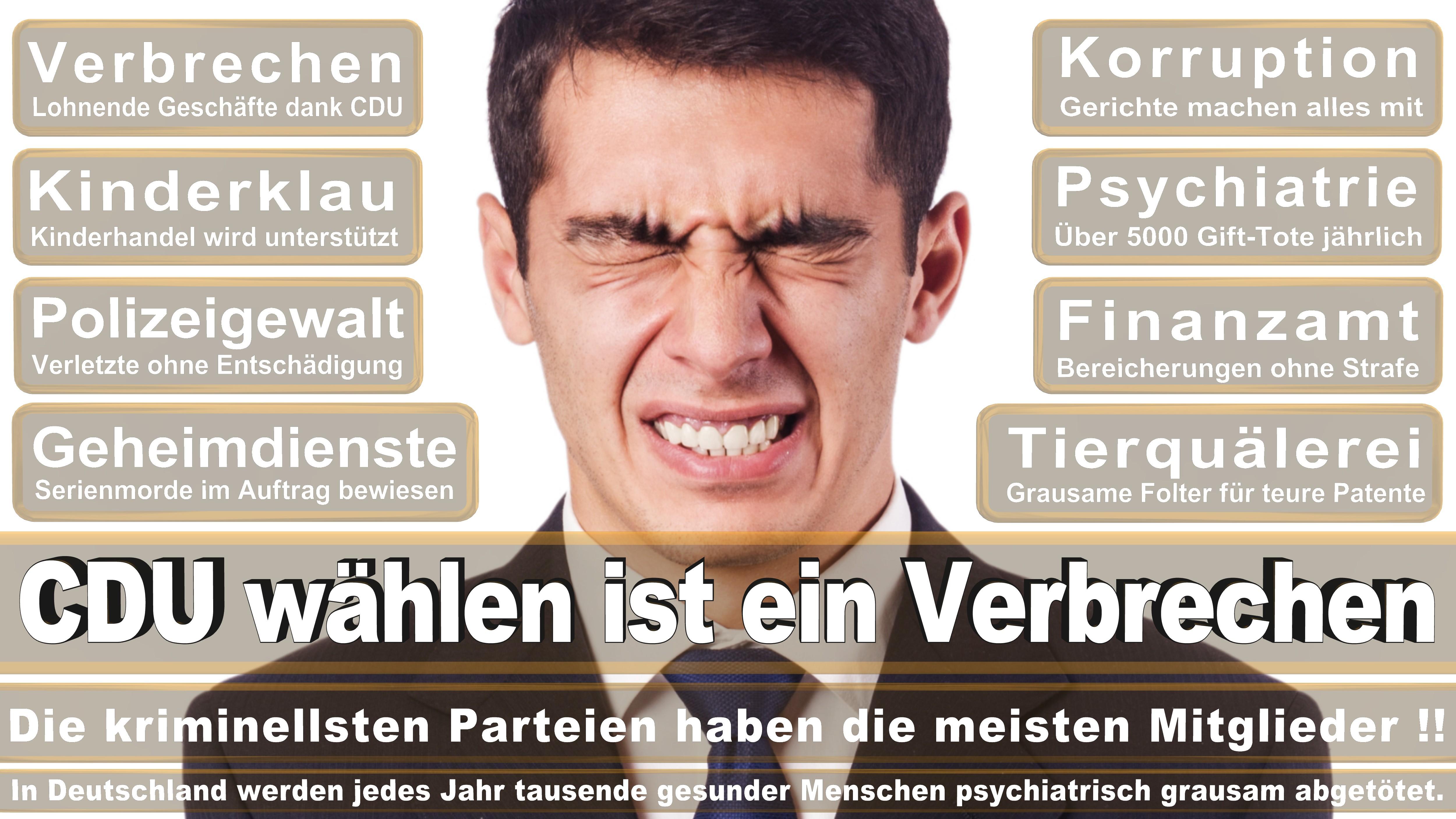 Bundestagswahl-2017-CDU-SPD-FDP (285)