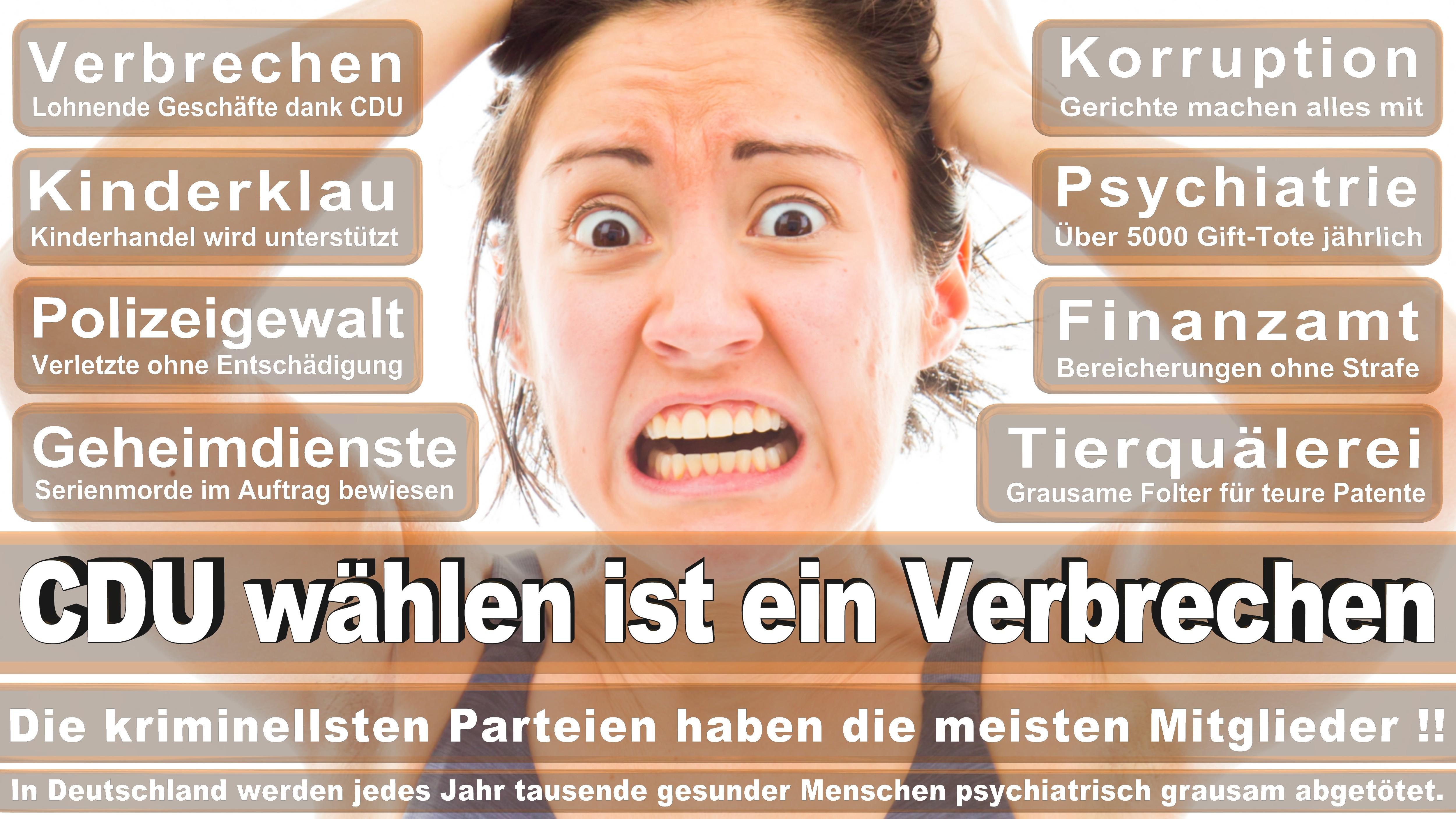 Bundestagswahl-2017-CDU-SPD-FDP (286)