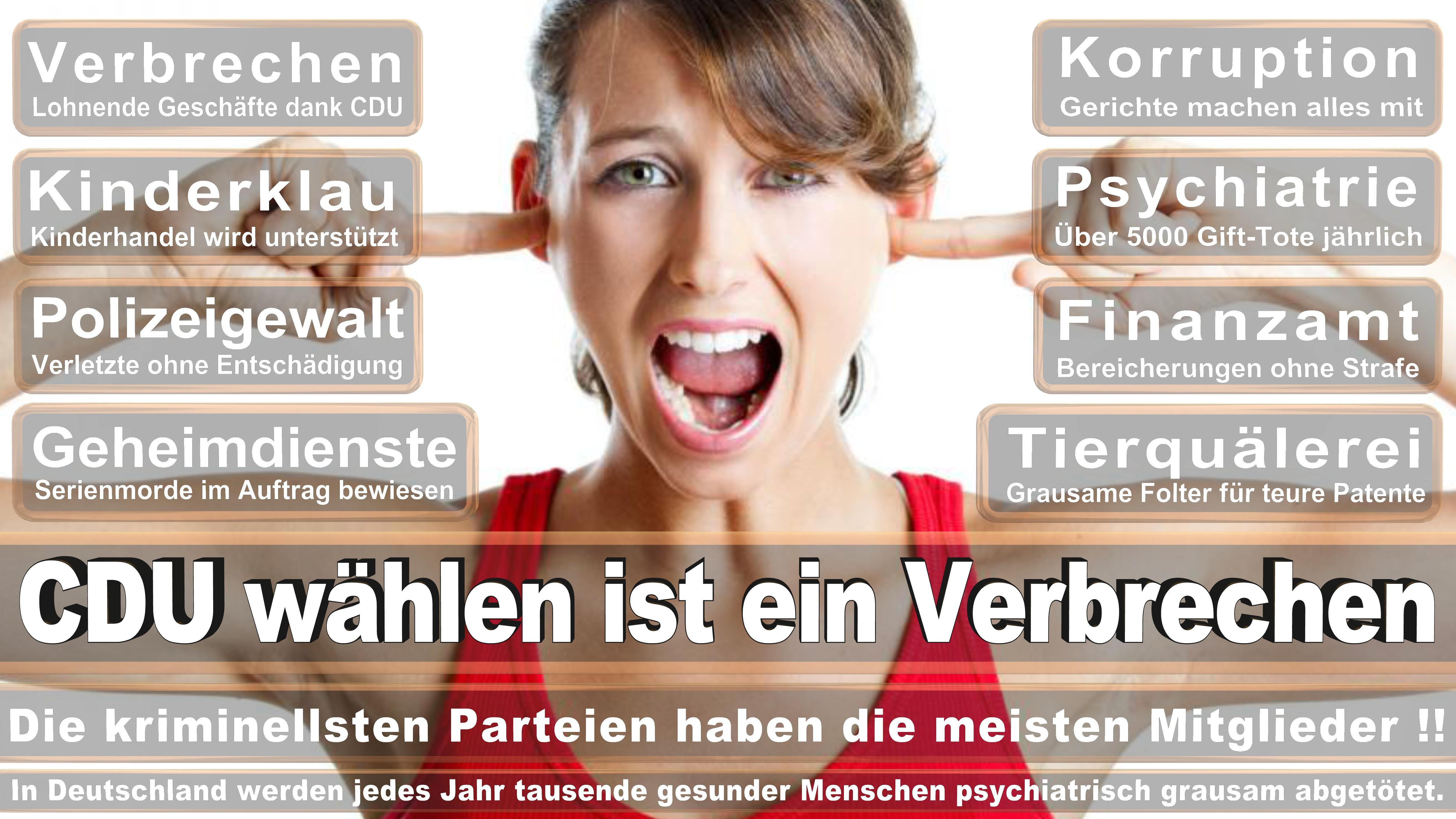 Bundestagswahl-2017-CDU-SPD-FDP (29)